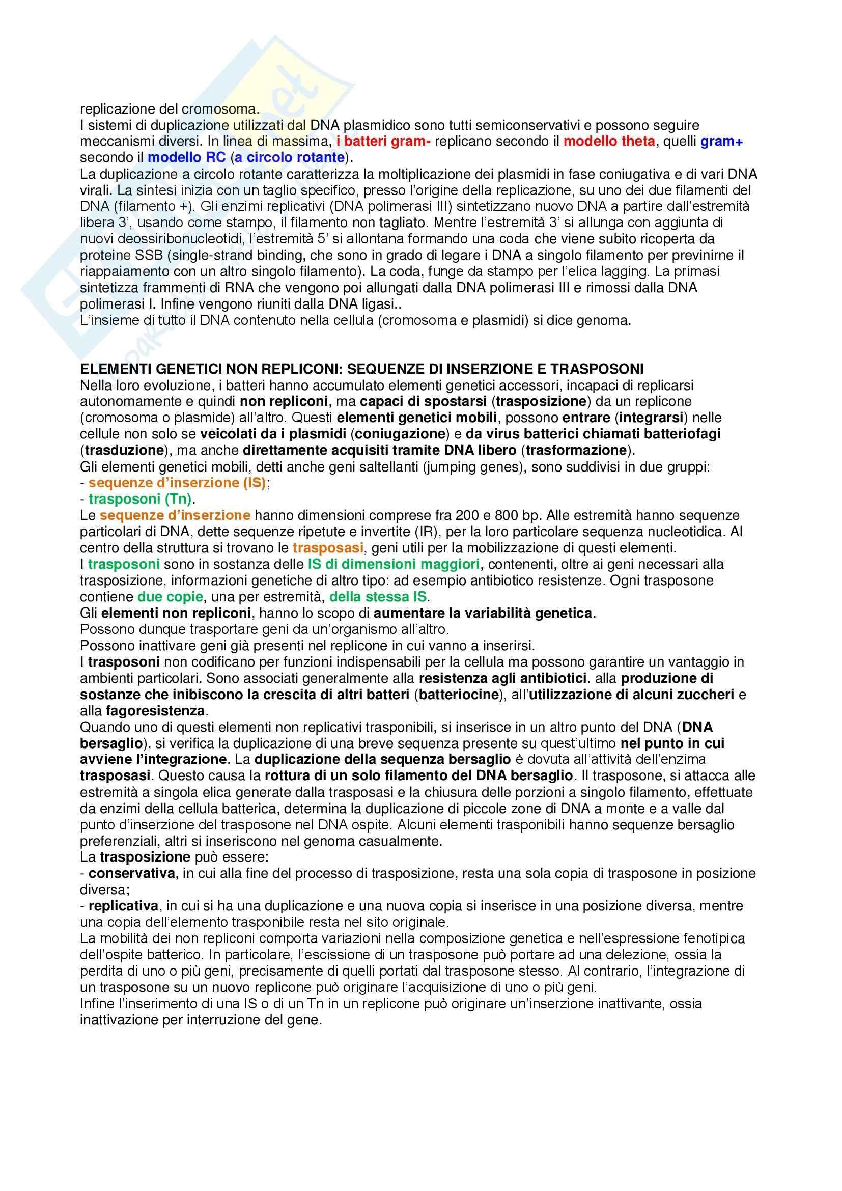 Riassunto esame Biologia dei Microrganismi, prof. Rizzello Pag. 6