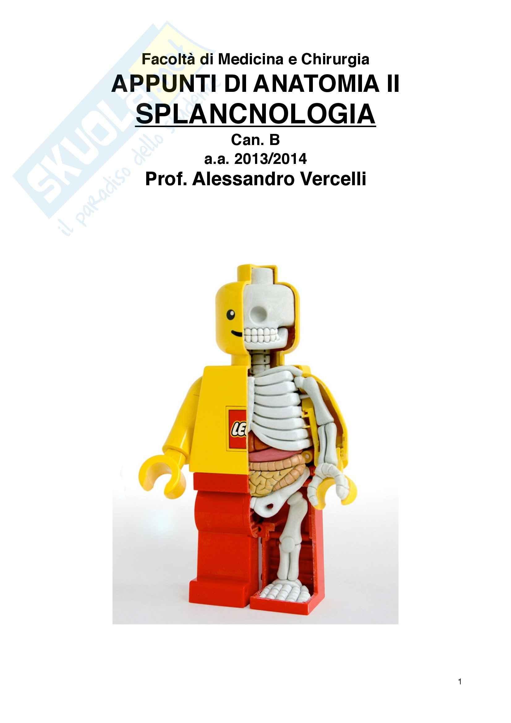 Appunti di Splancnologia - Anatomia II