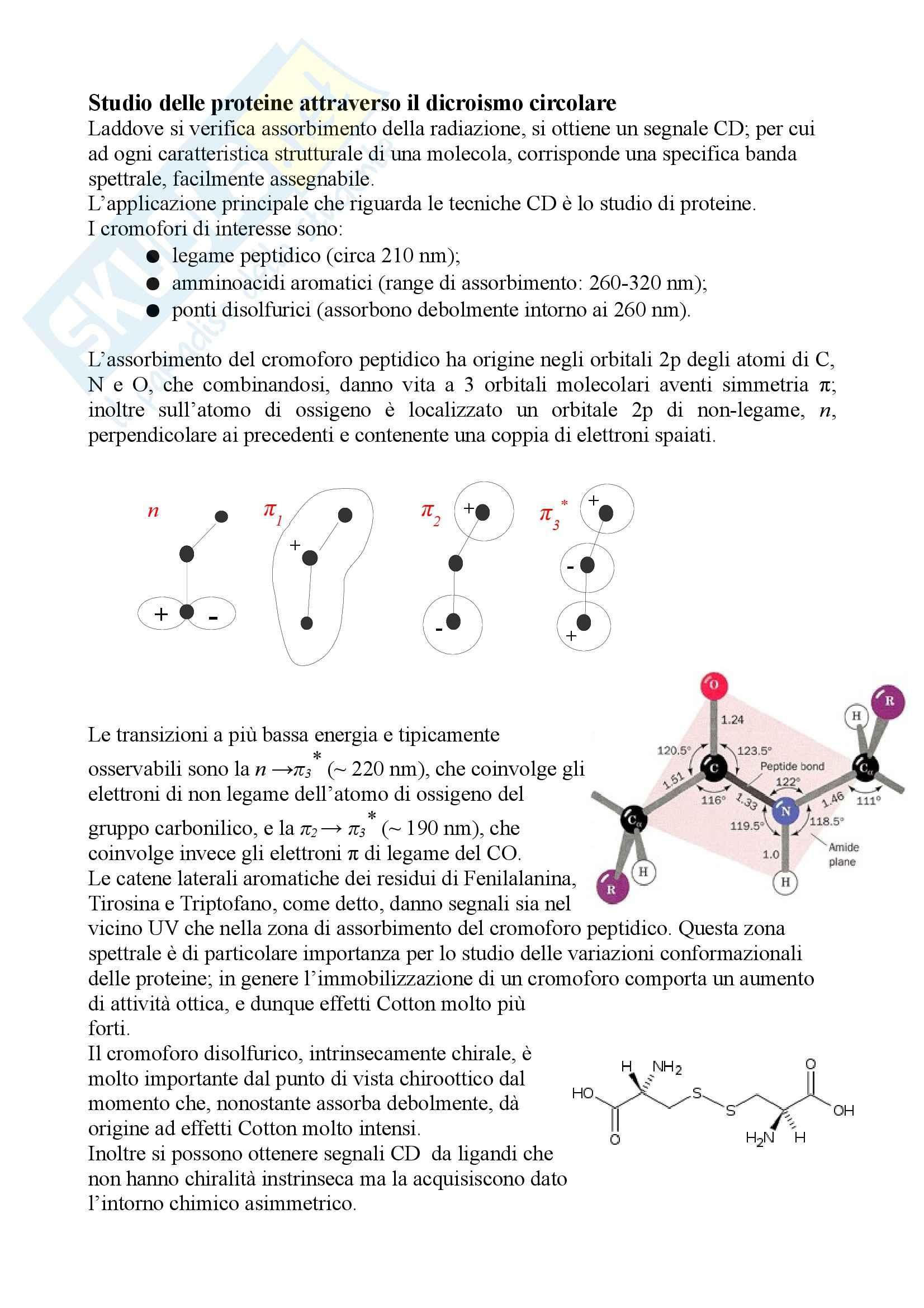 Chimica fisica - dicroismo circolare Pag. 11