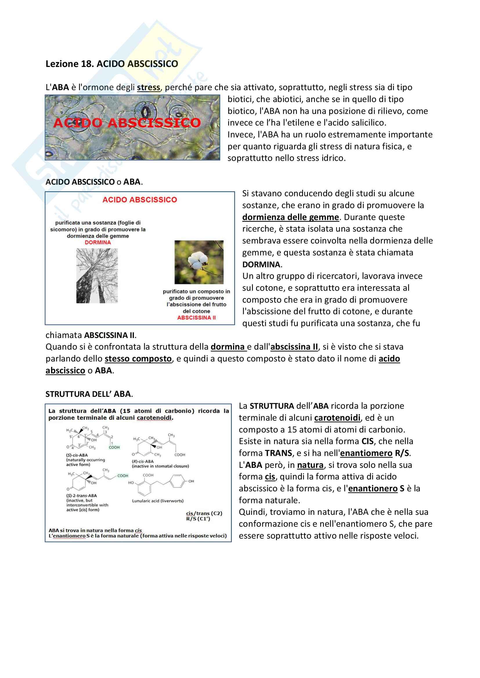 18) Lezione Acido Abscissico