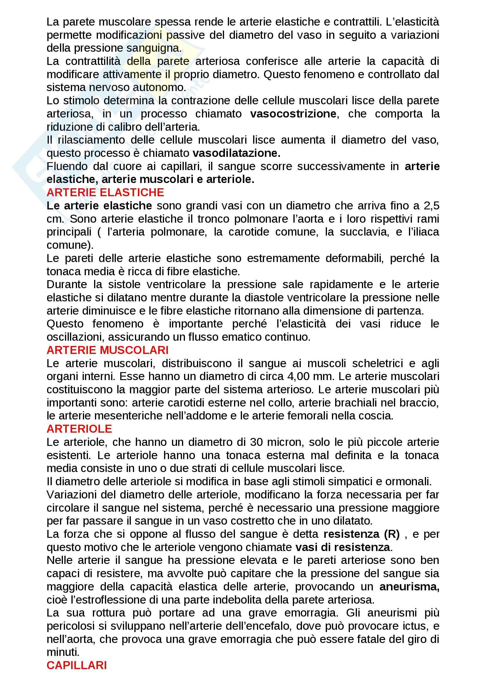 Apparato cardiocircolatorio: Appunti di Anatomia e fisiologia Pag. 16