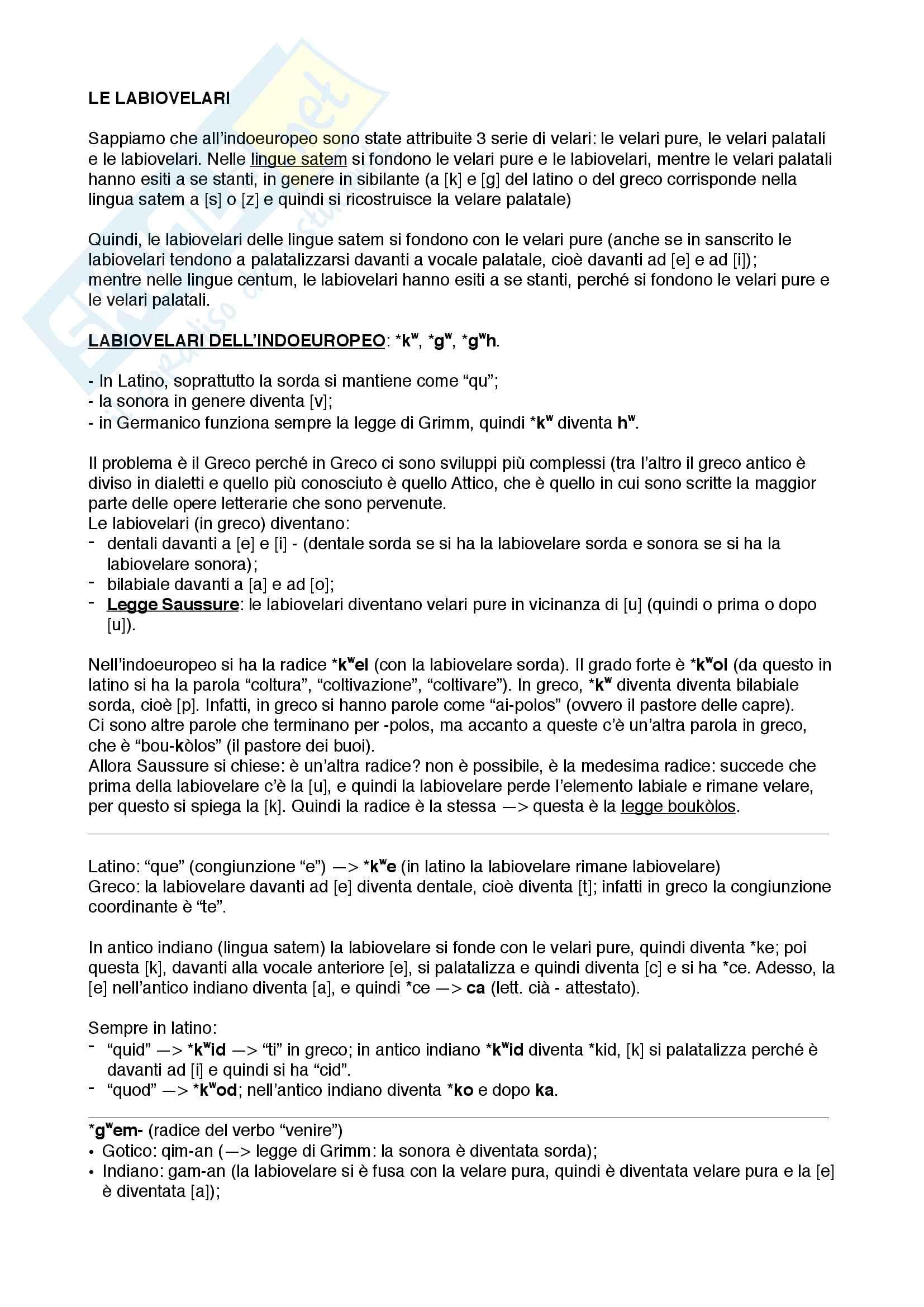 Linguistica storica 6 - Le labiovelari e teoria glottidale