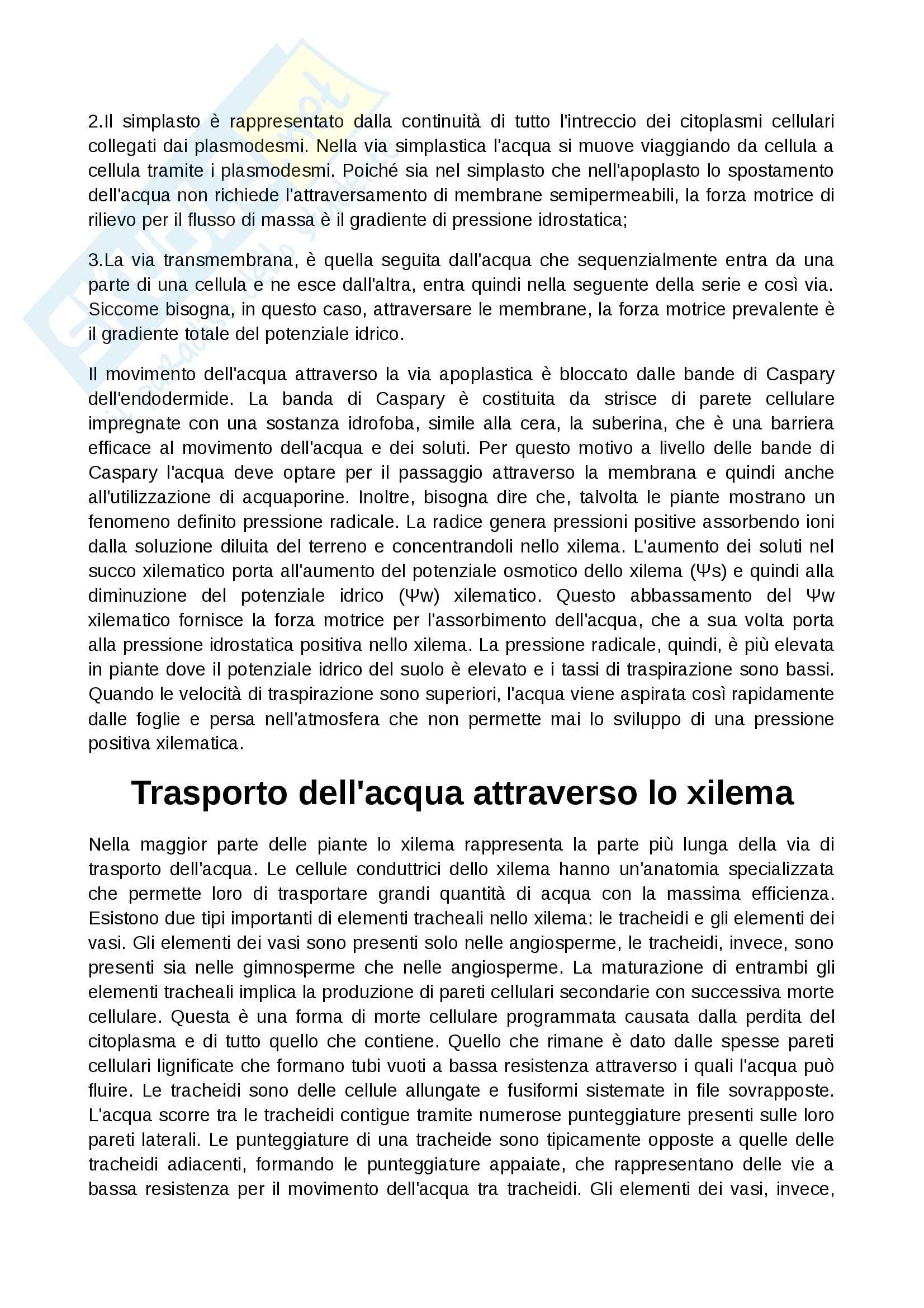 Fisiologia vegetale - Appunti Pag. 6