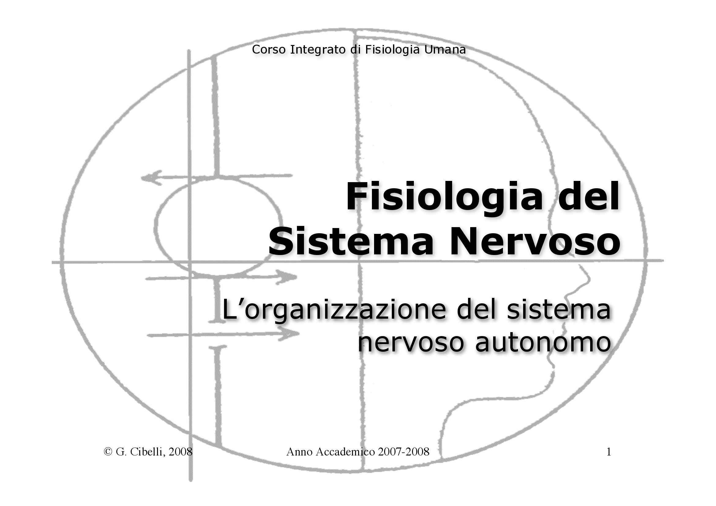 Fisiologia umana II - organizzazione del SNA