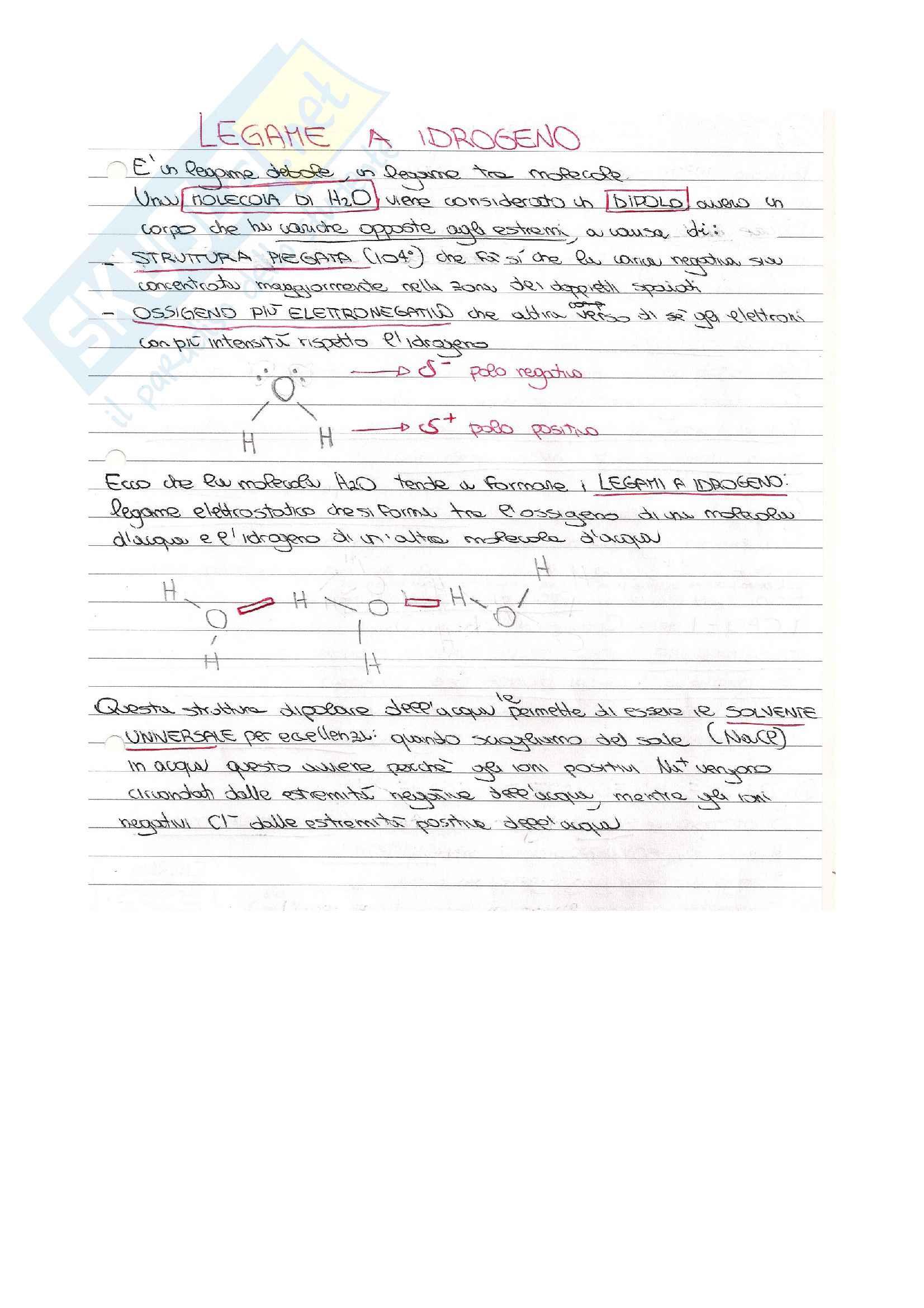 Appunti di chimica su Legami chimici, Curva di Morse, legame ionico, covalente, dativo; Ibridazione, Teoria Vsepr, Teoria del Valence Bond e  Teoria degli orbitali molecolari, Teoria d Pag. 11