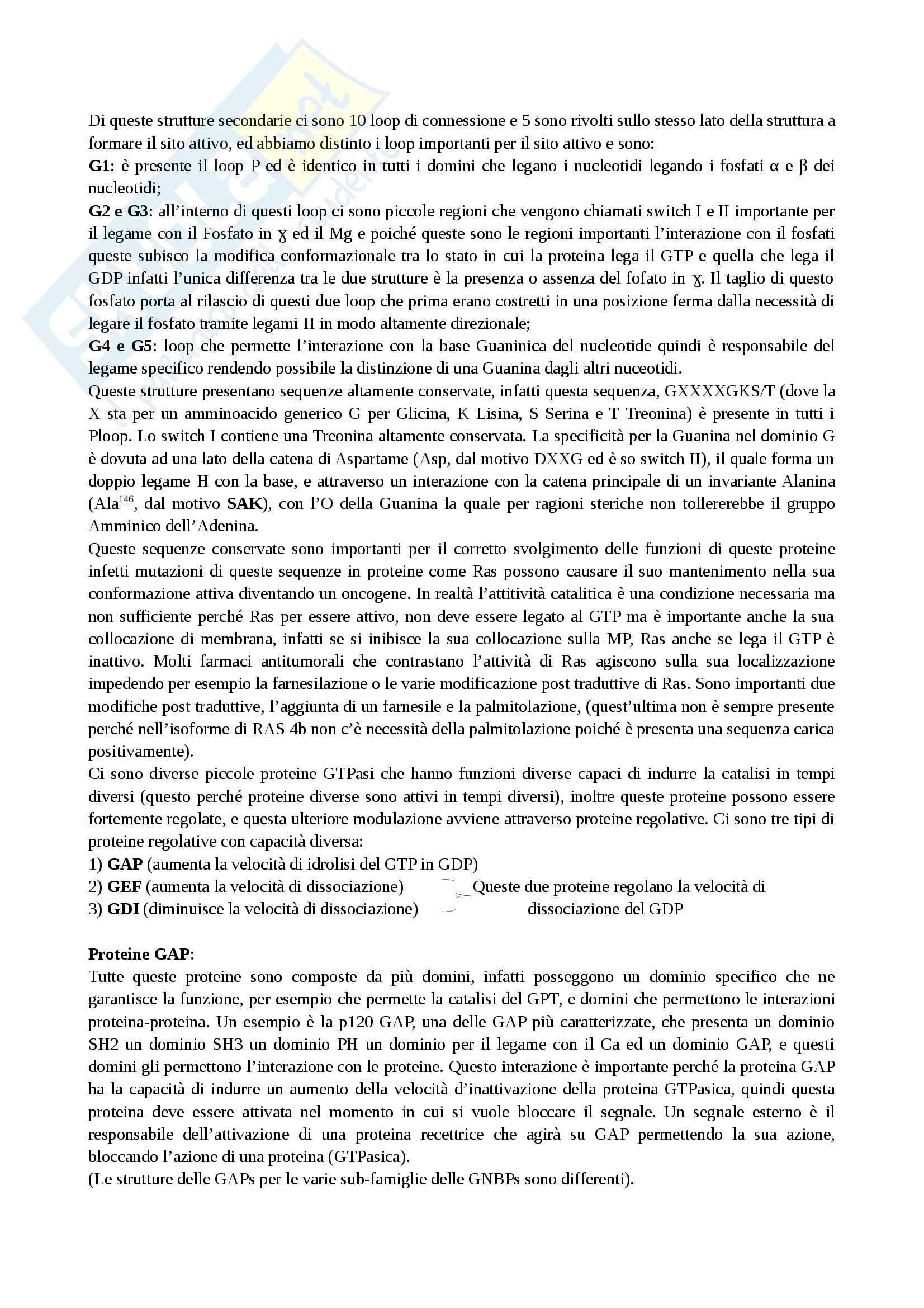 Le piccole GTPasi e molecole regolative Pag. 2
