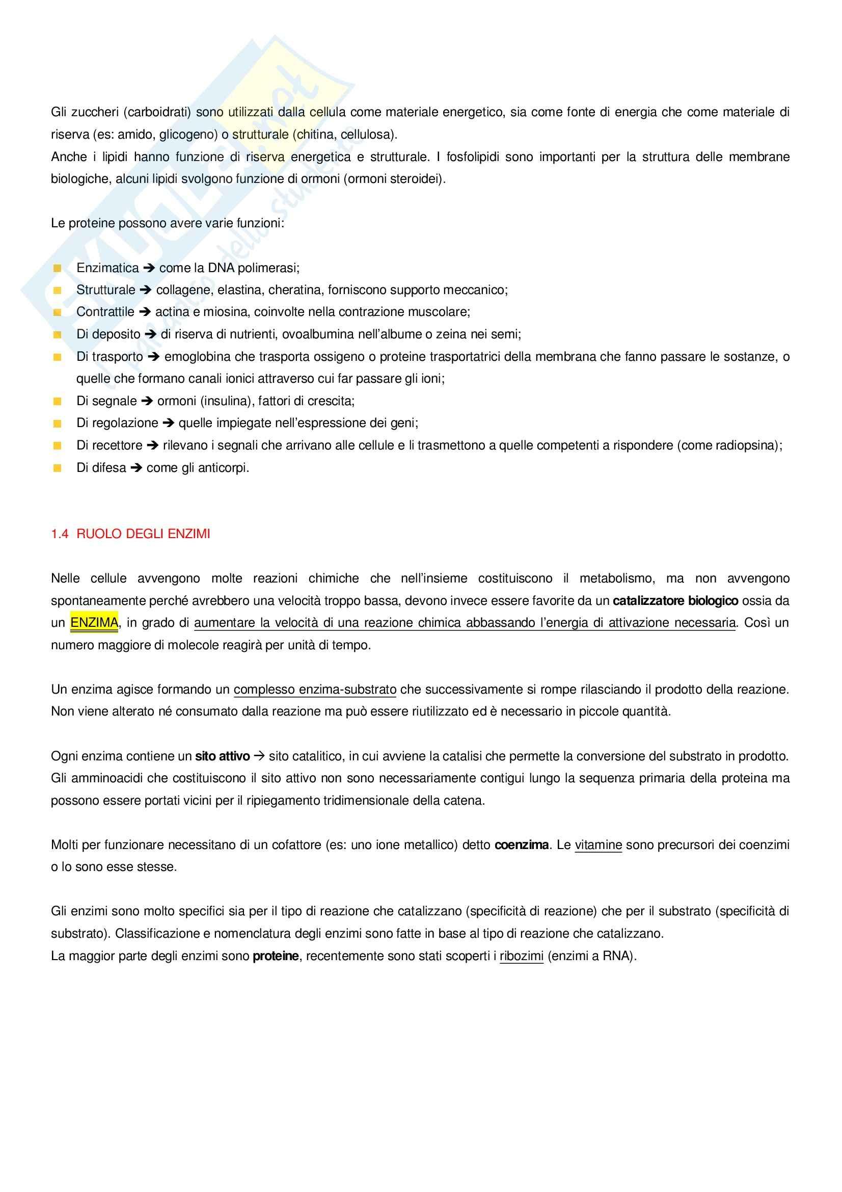 Basi biologiche Pag. 2