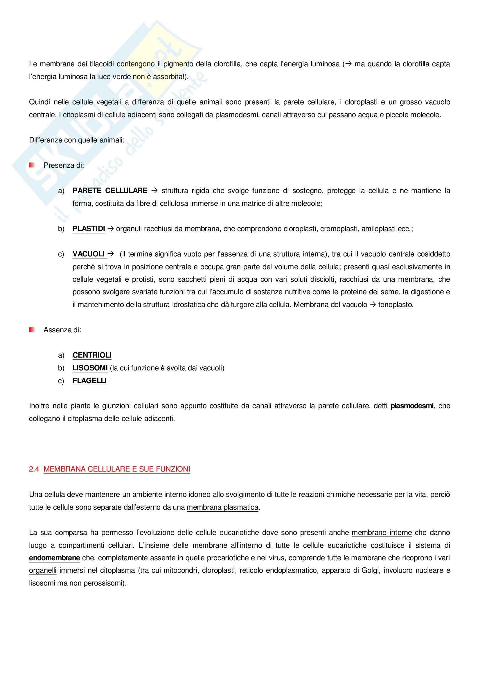 Basi biologiche Pag. 6