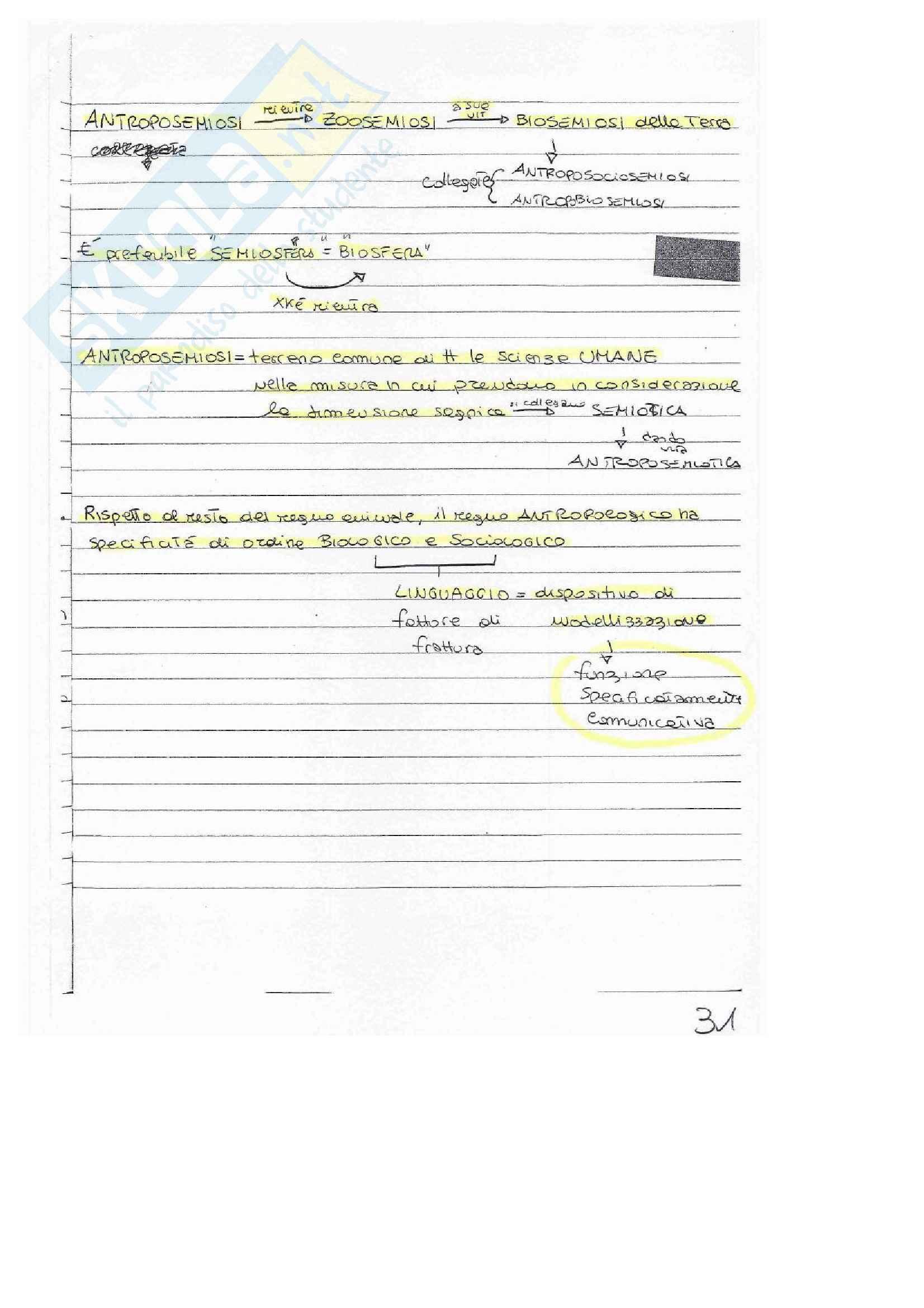 Semiotica, Appunti Pag. 31