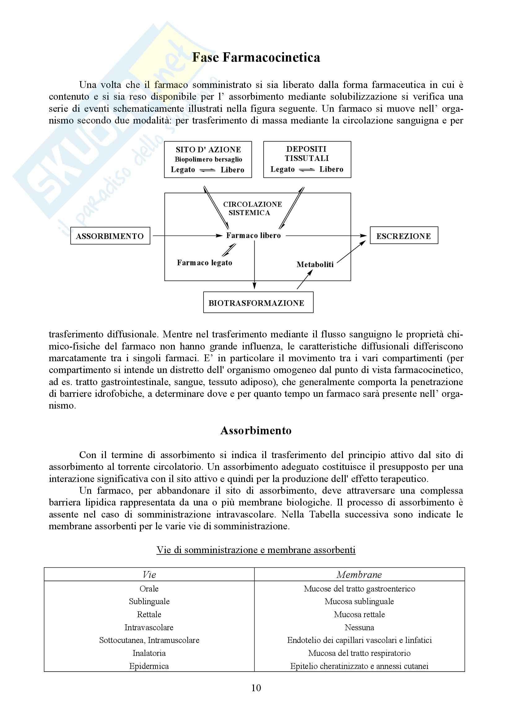 Chimica farmaceutica e tossicologica I - Appunti Pag. 11