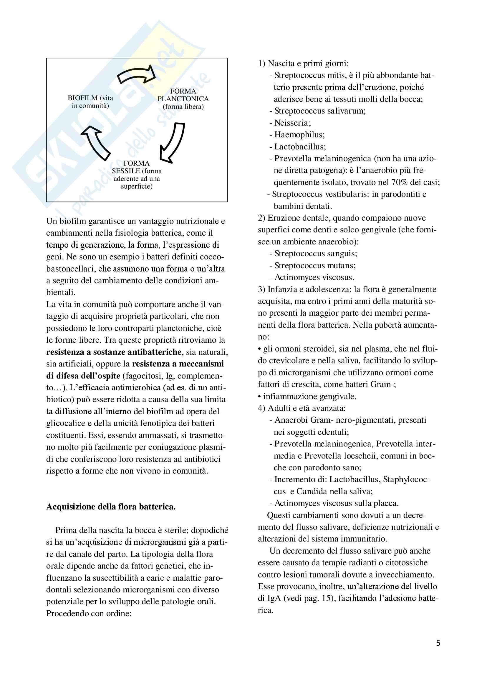 Microbiologia odontoiatrica Pag. 6
