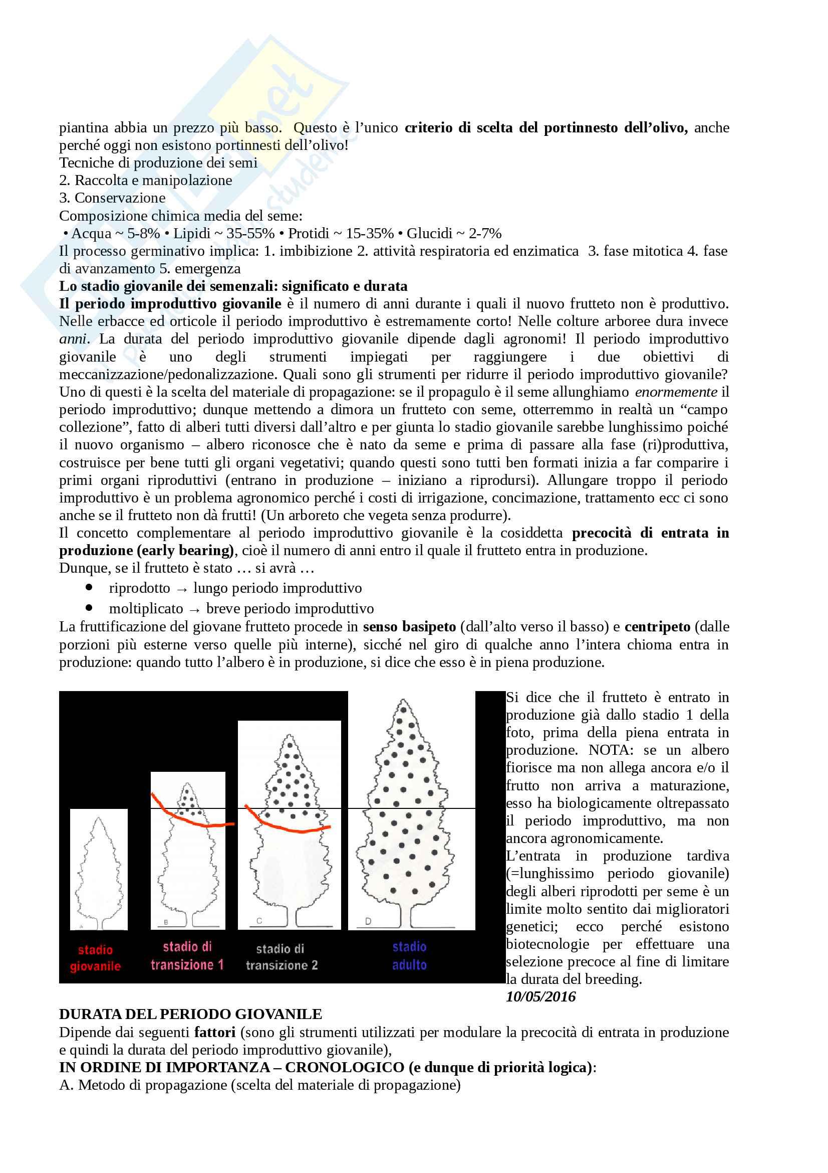Arboricoltura - seconda parte Pag. 2
