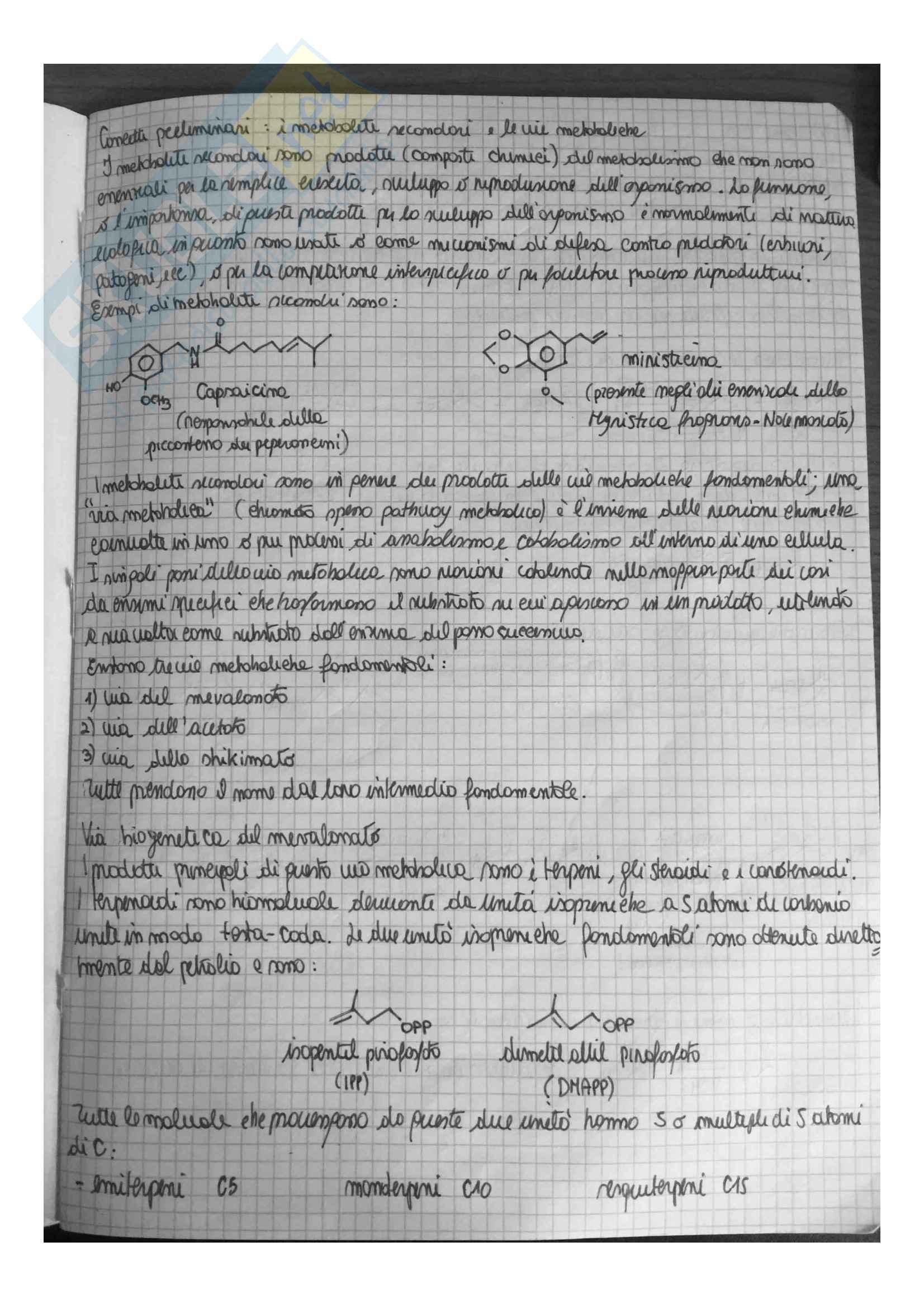 Appunti di Chimica Organica 3 (Chimica delle sostanze naturali) Pag. 2
