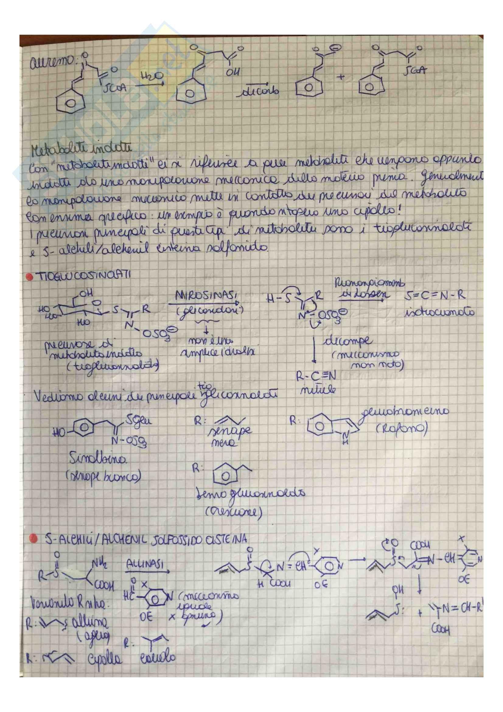 Appunti di Chimica Organica 3 (Chimica delle sostanze naturali) Pag. 36