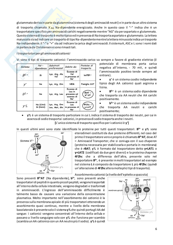 Meccanismi di trasporto cellulare Pag. 6