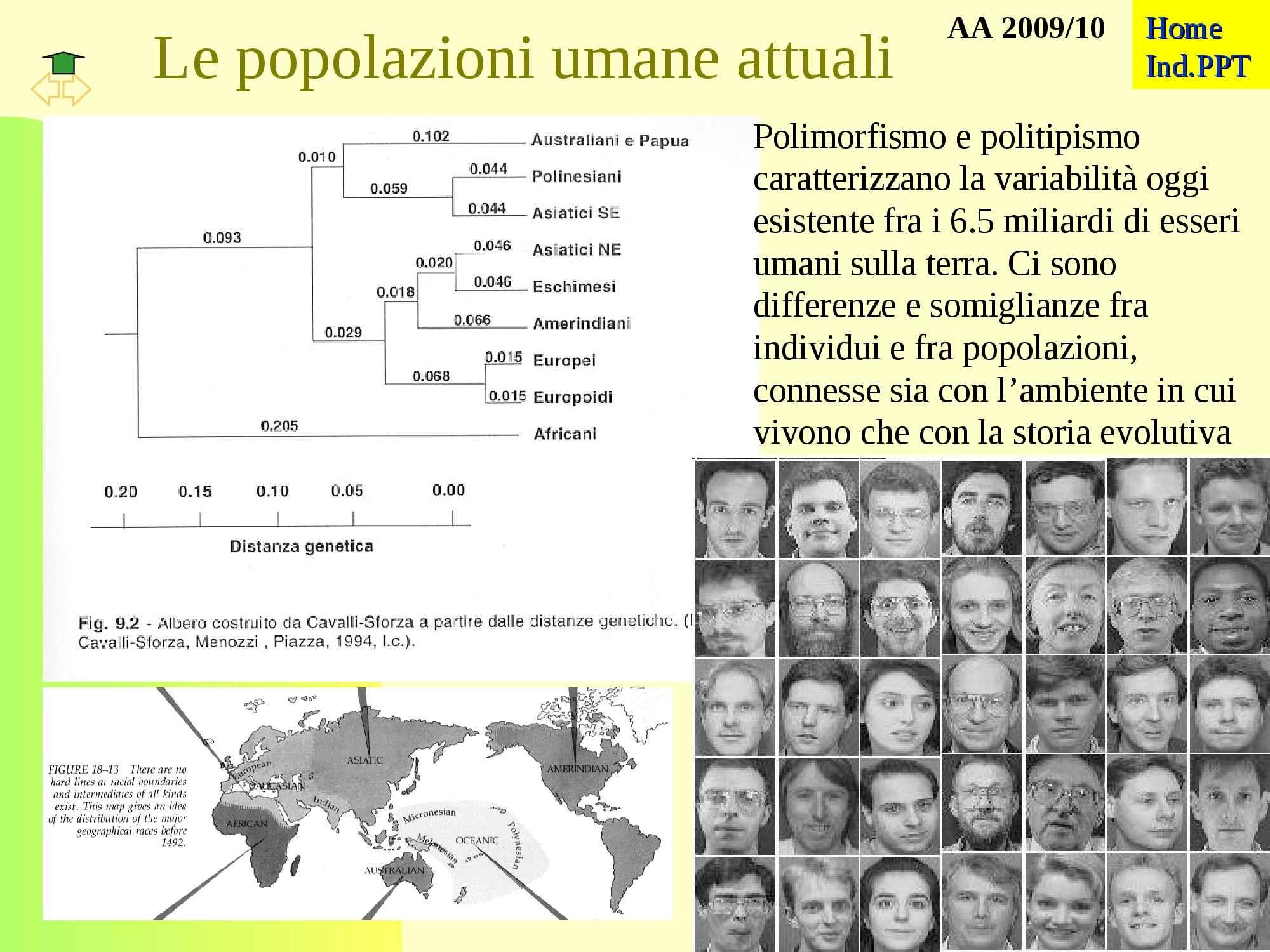 Popolazioni umane attuali