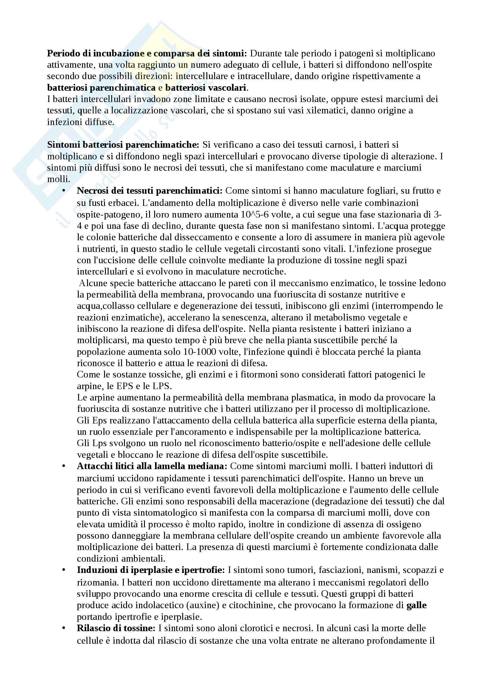 Riassunto esame Patologia Vegetale, prof. Agosteo Pag. 11