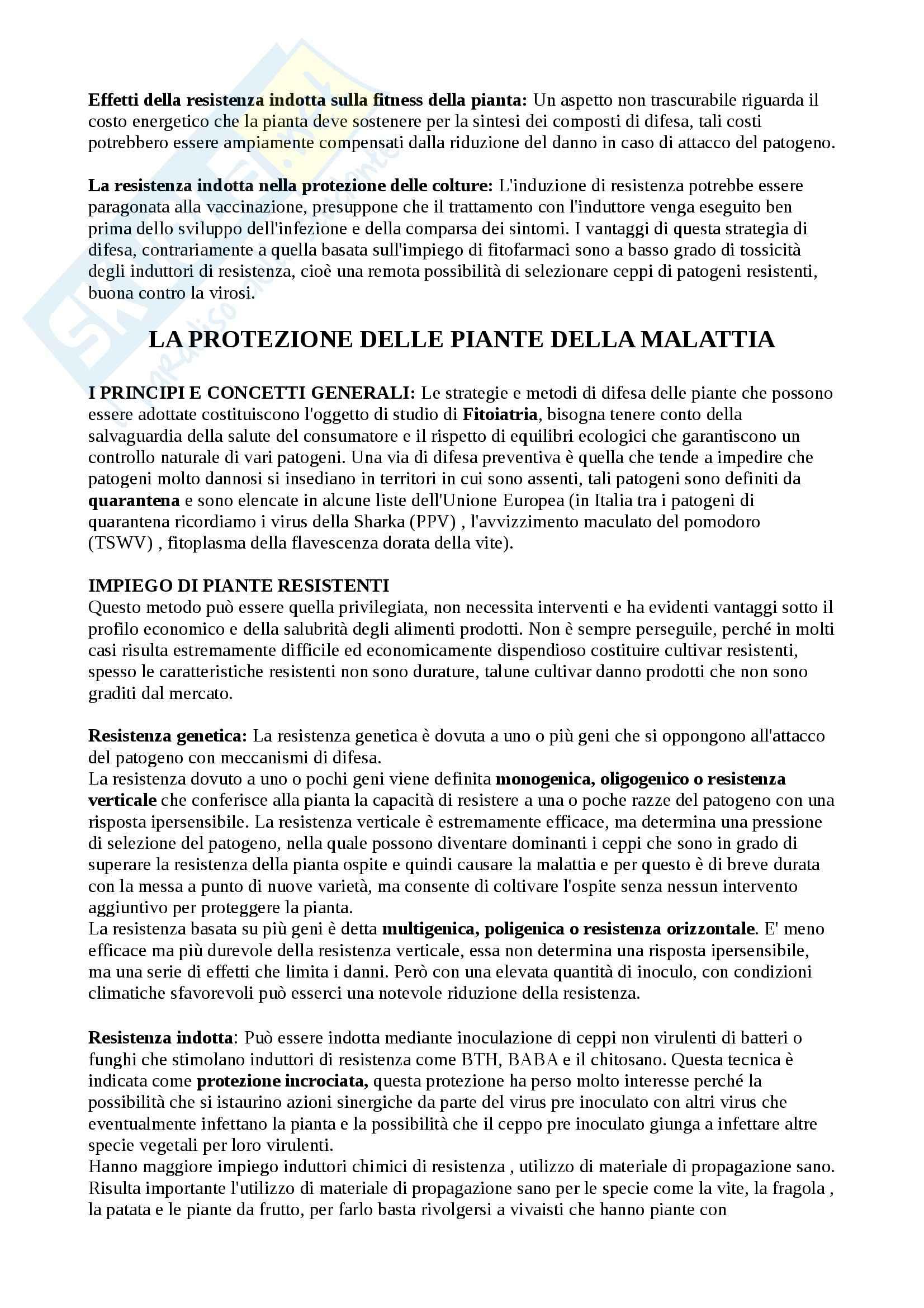 Riassunto esame Patologia Vegetale, prof. Agosteo Pag. 26
