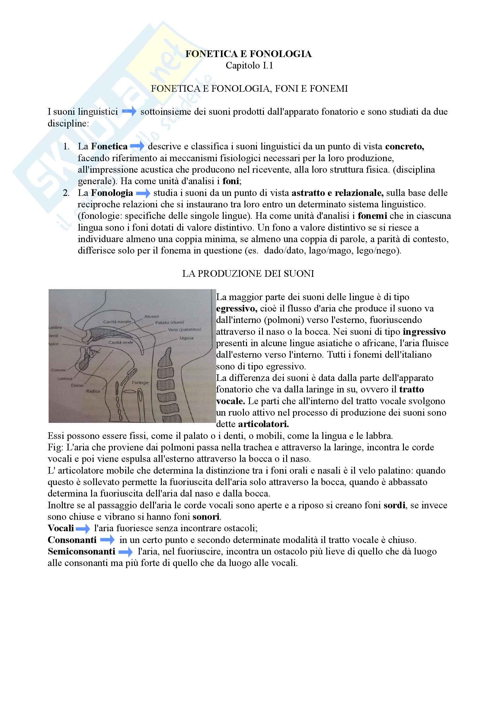 Riassunto Esame Linguistica Italiana I, docente Fornasiero, libro consigliato Linguistica Italiana di Massimo Palermo