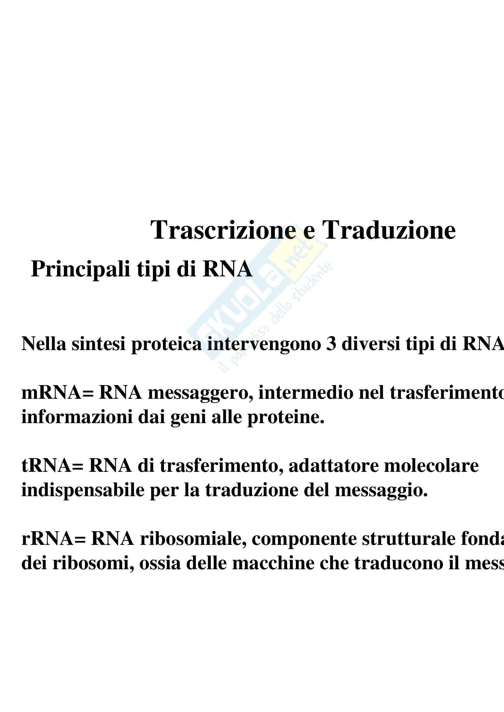 Biologia e genetica - trascrizione e traduzione Pag. 21