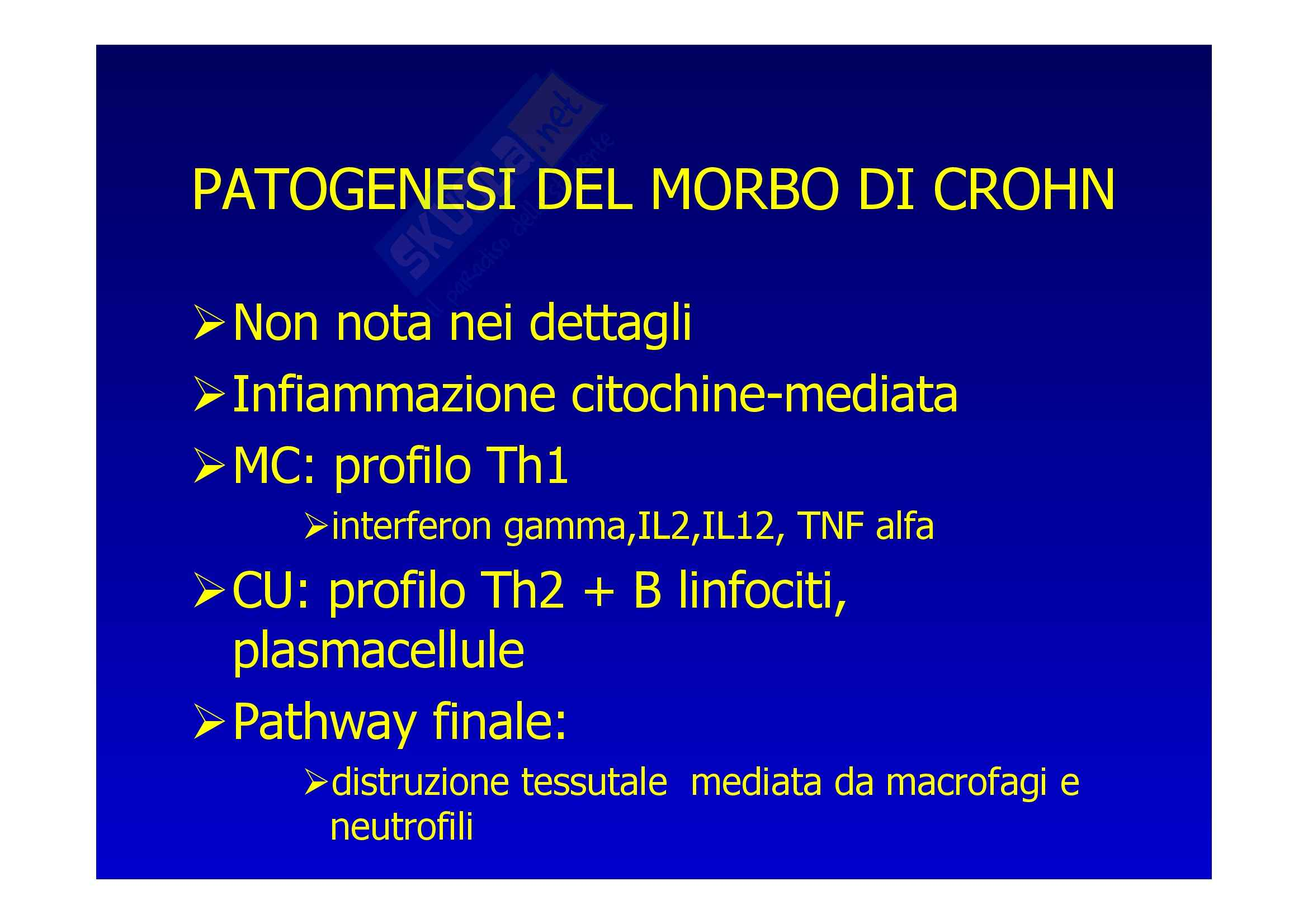 Chirurgia generale - morbo di Crohn Pag. 21
