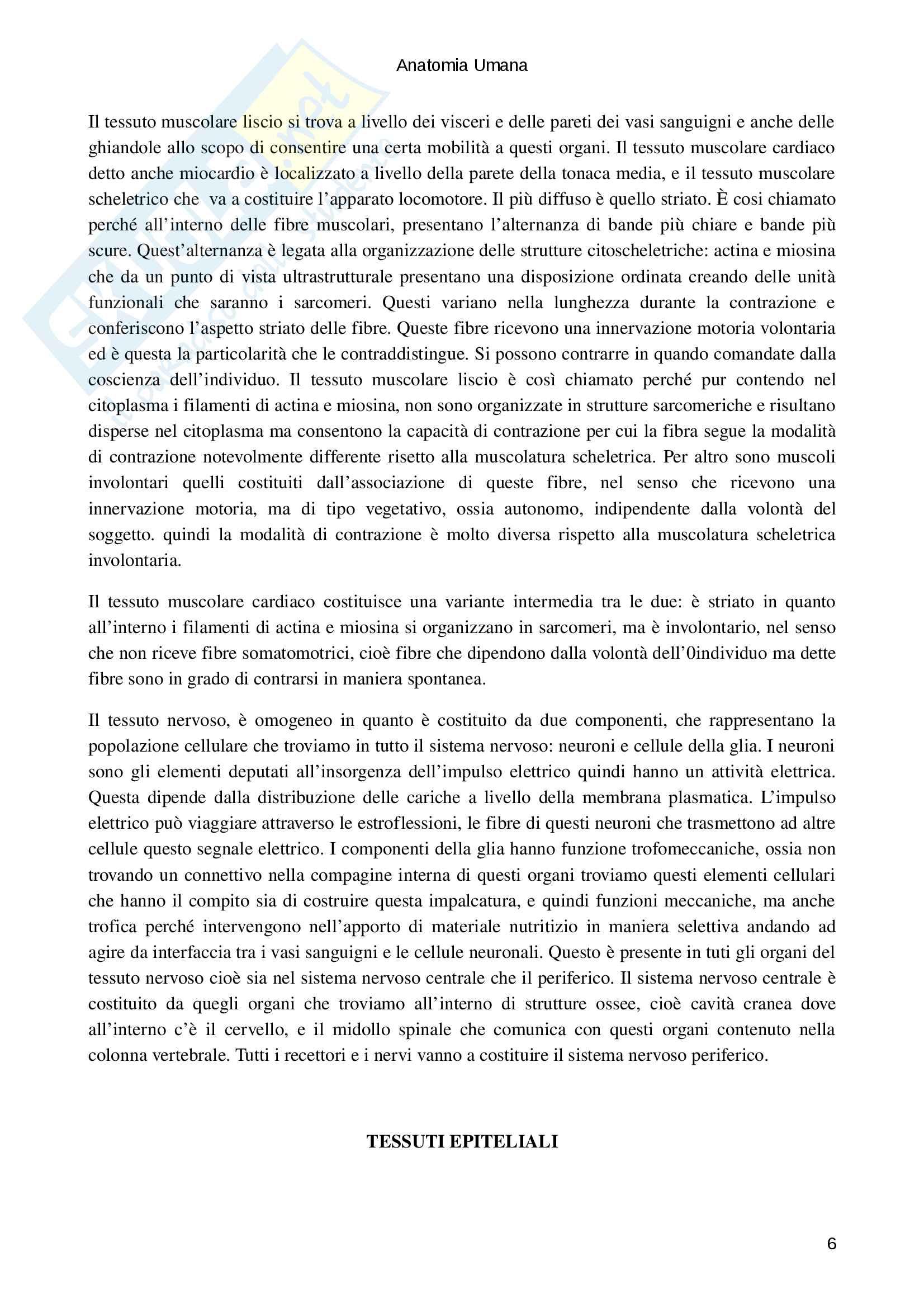 Tessuti epiteliali e connettivi Pag. 6