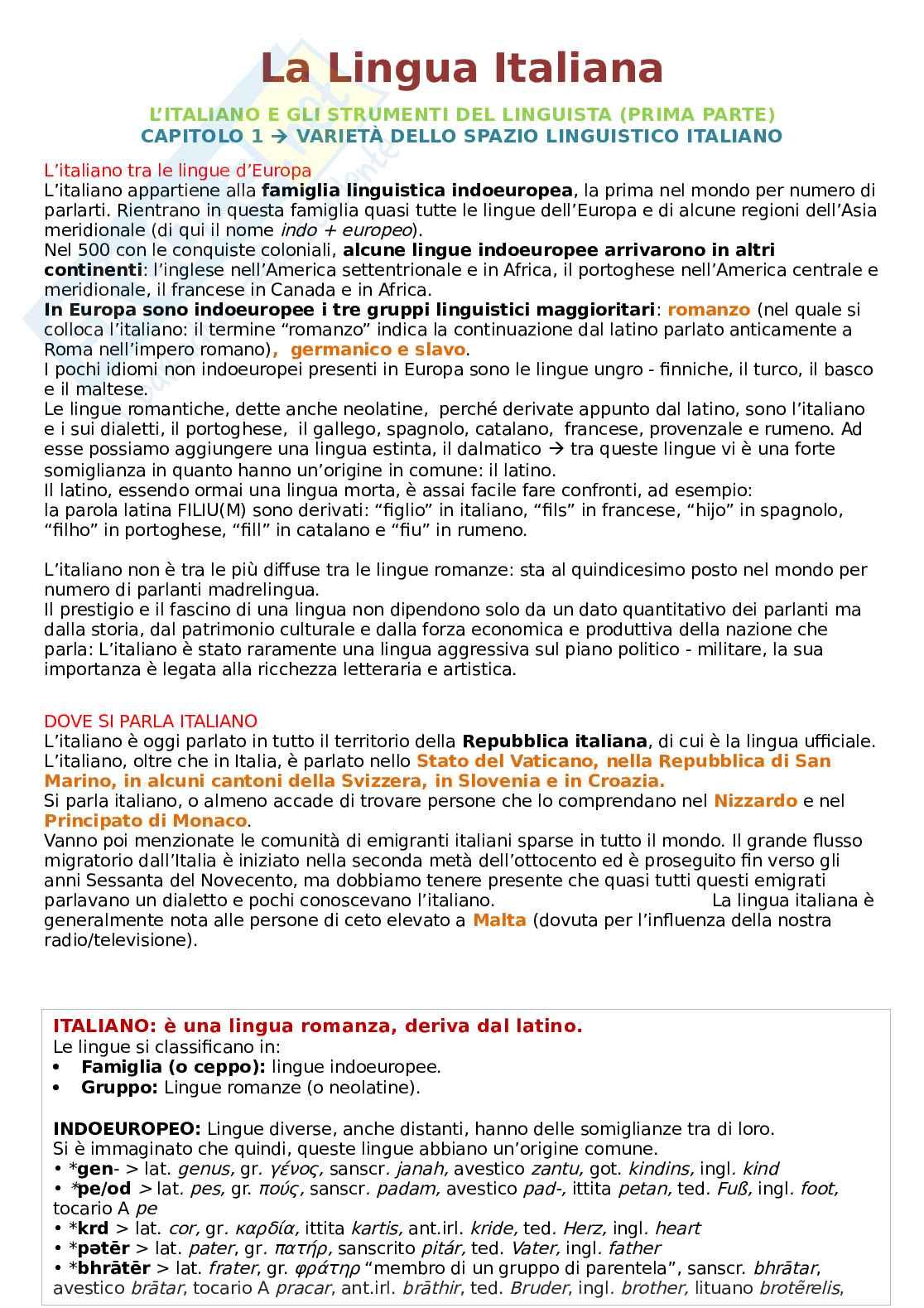 Riassunto esame Linguistica italiana I e didattica della lingua, prof. Franceschini, libro consigliato La lingua italiana: storia, testi, strumenti, Marazzini, Maconi