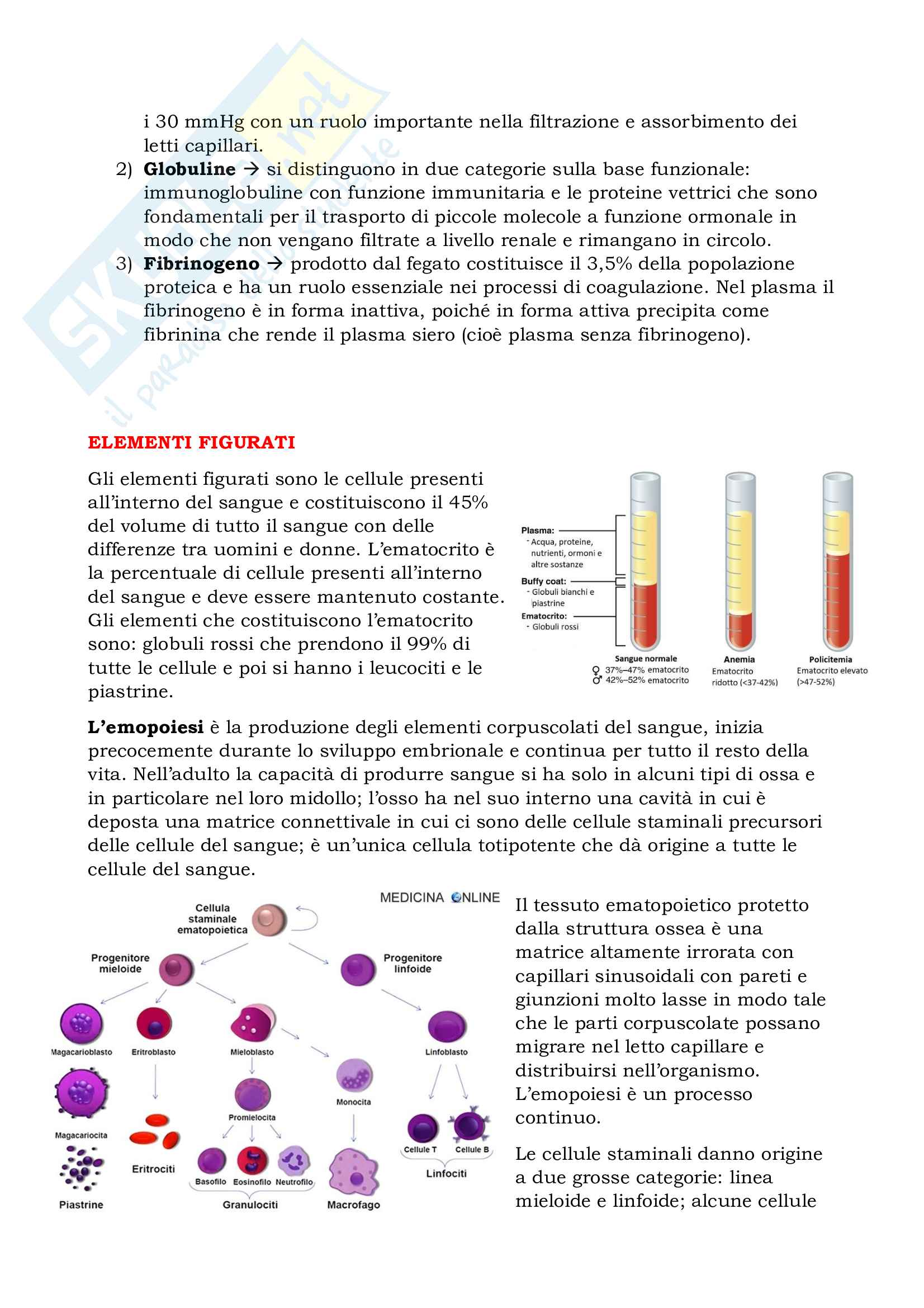 Appunti Fisiologia Cellulare 6, Prof. Perego Pag. 2