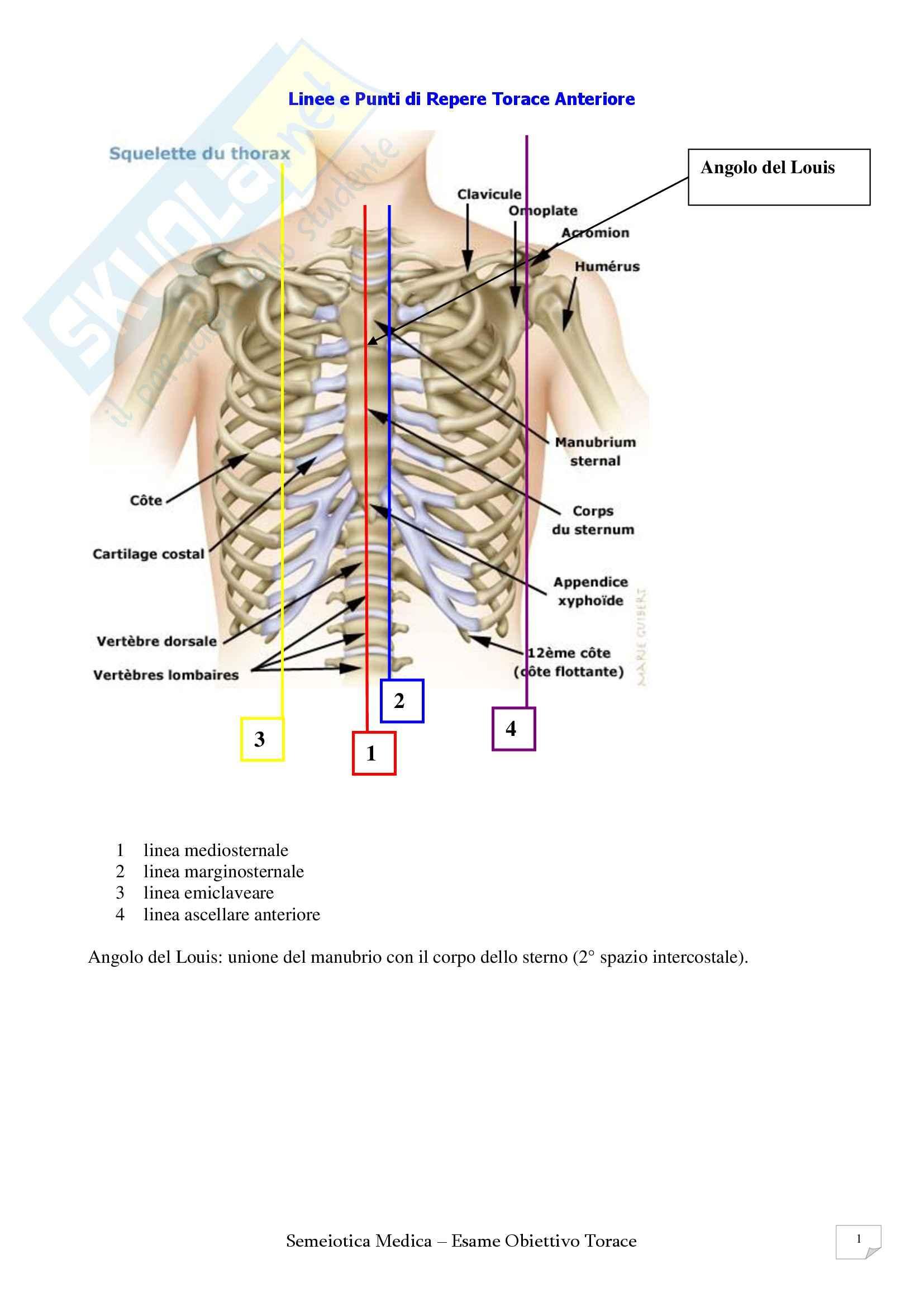 Semeiotica Medica - Figure utili Pag. 16