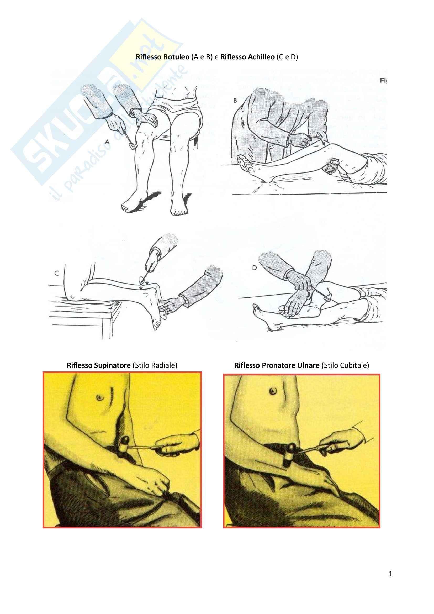 Semeiotica Medica - Figure utili Pag. 6