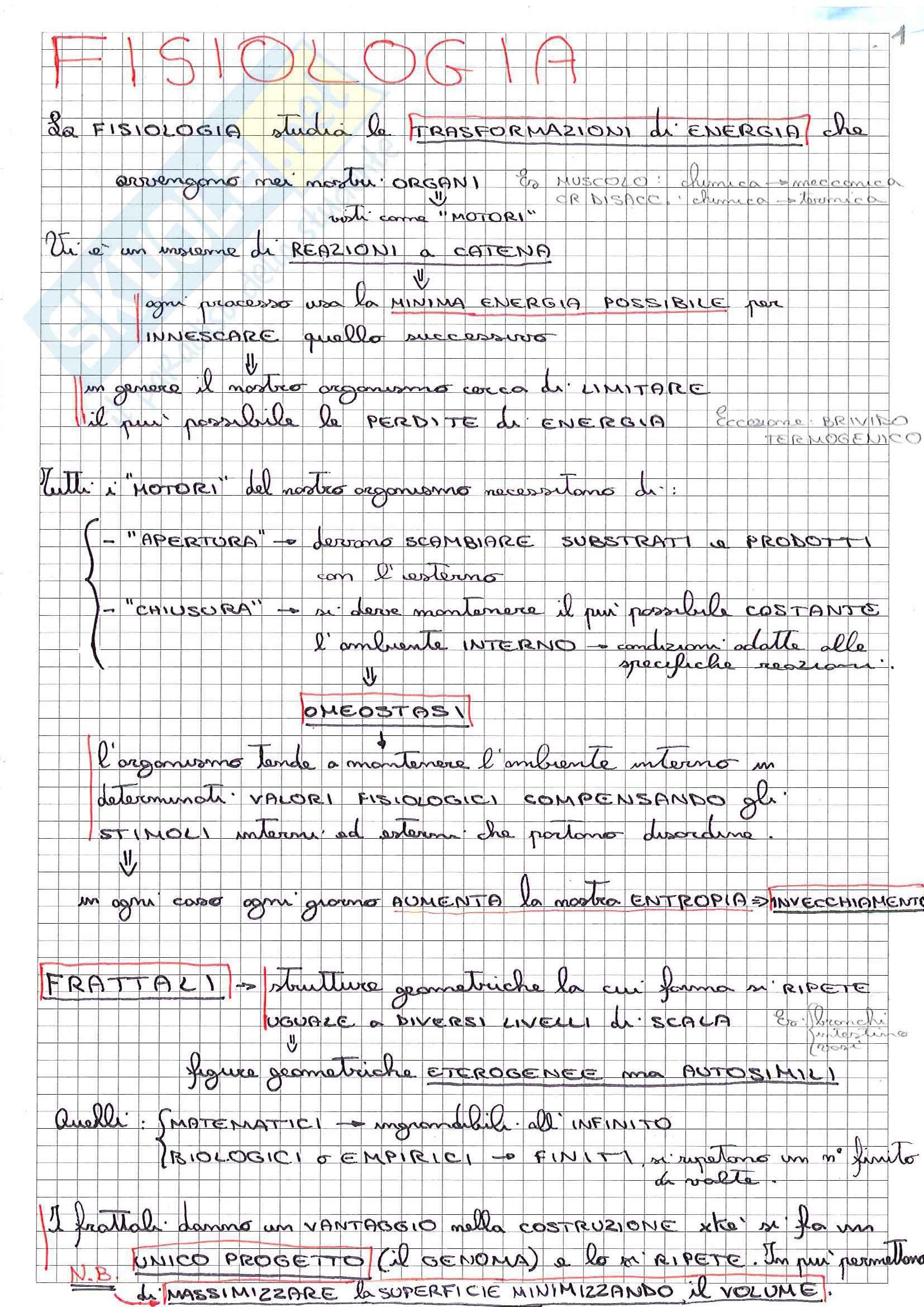 Riassunto esame Fisiologia, prof Minetti, libro consigliato Fisiologia Umana, Baldissera (parte 1)