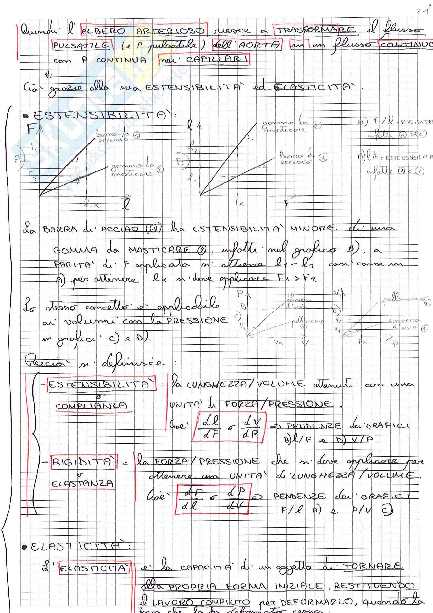 Riassunto esame Fisiologia, prof Minetti, libro consigliato Fisiologia Umana, Baldissera (parte 1) Pag. 41
