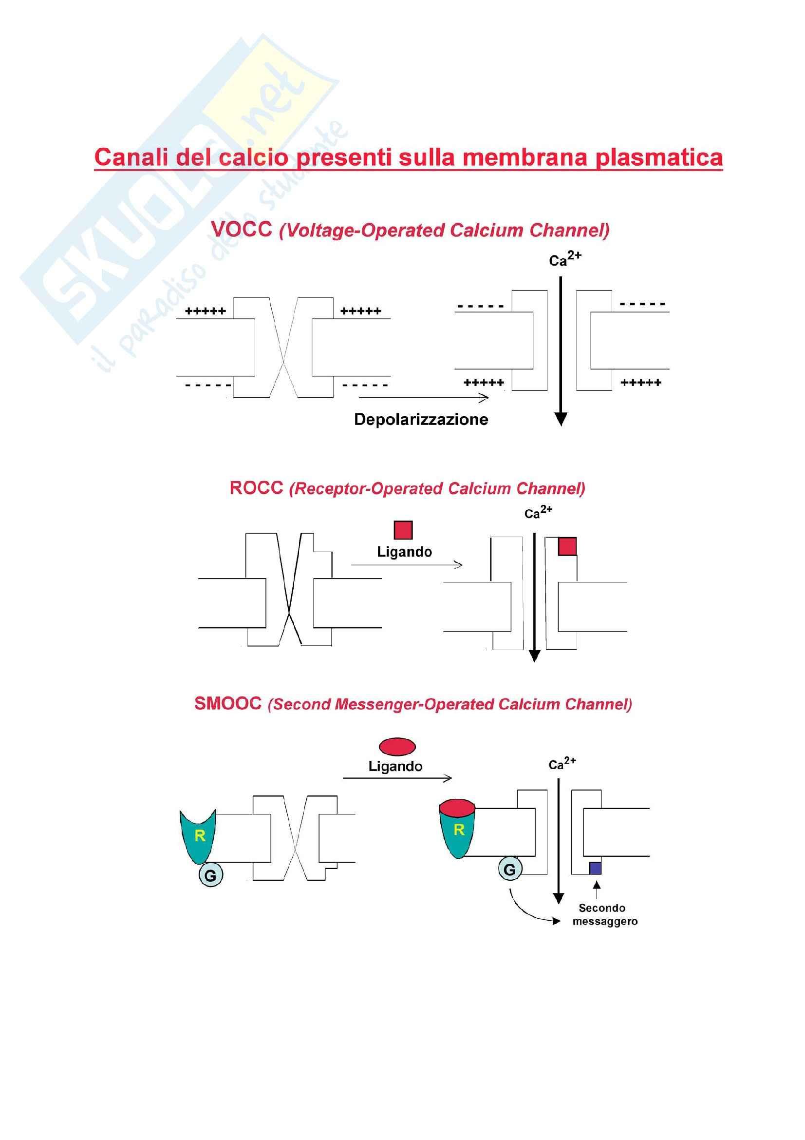 Canali del calcio - VOC, ROC, SMOC