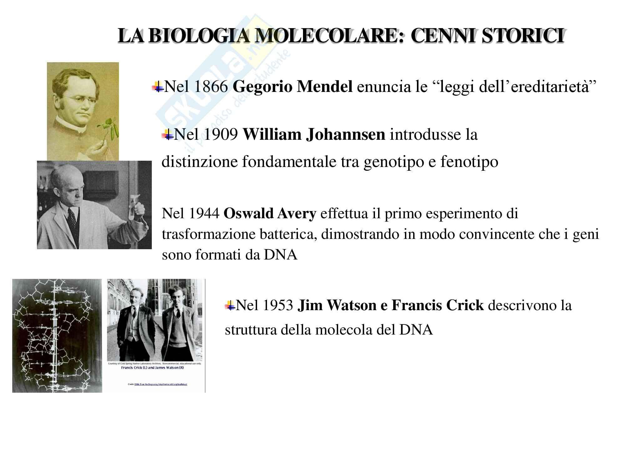 Microbiologia Clinica - Biologia Molecolare