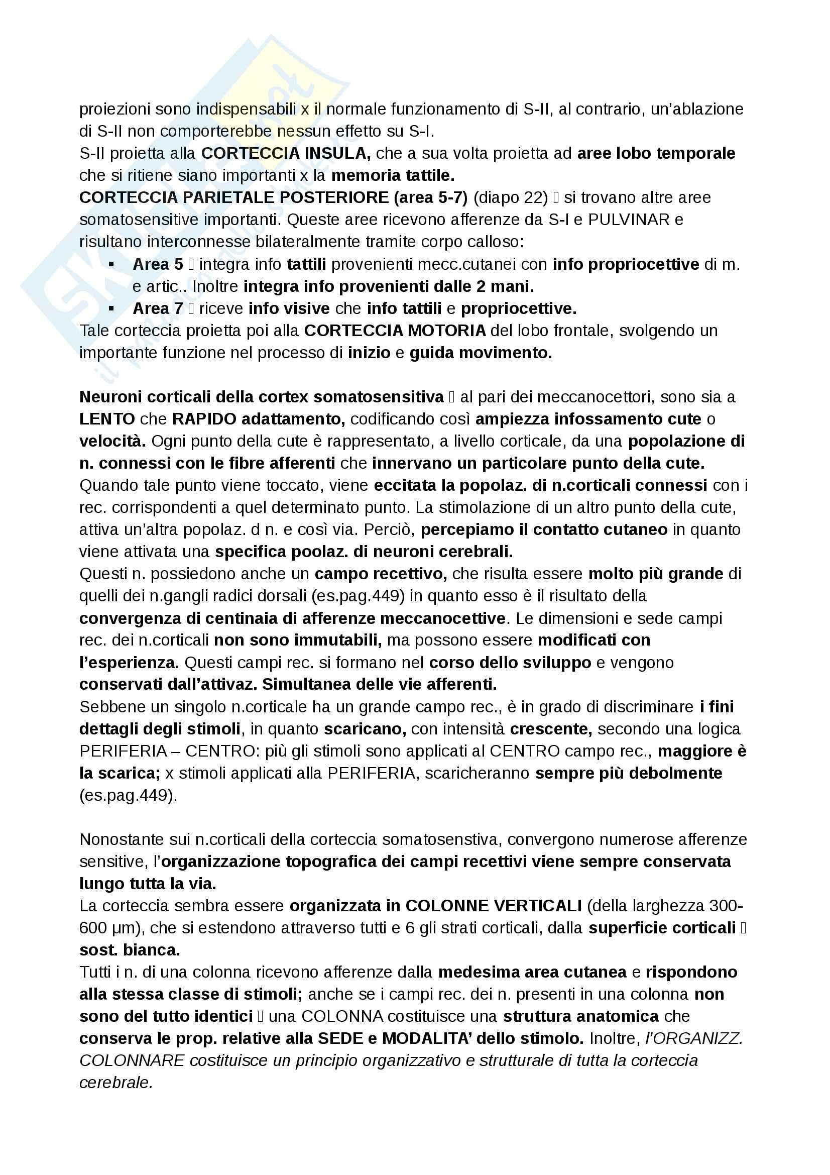 Riassunto esame Neurofisiologia, prof. Cuppini Pag. 36