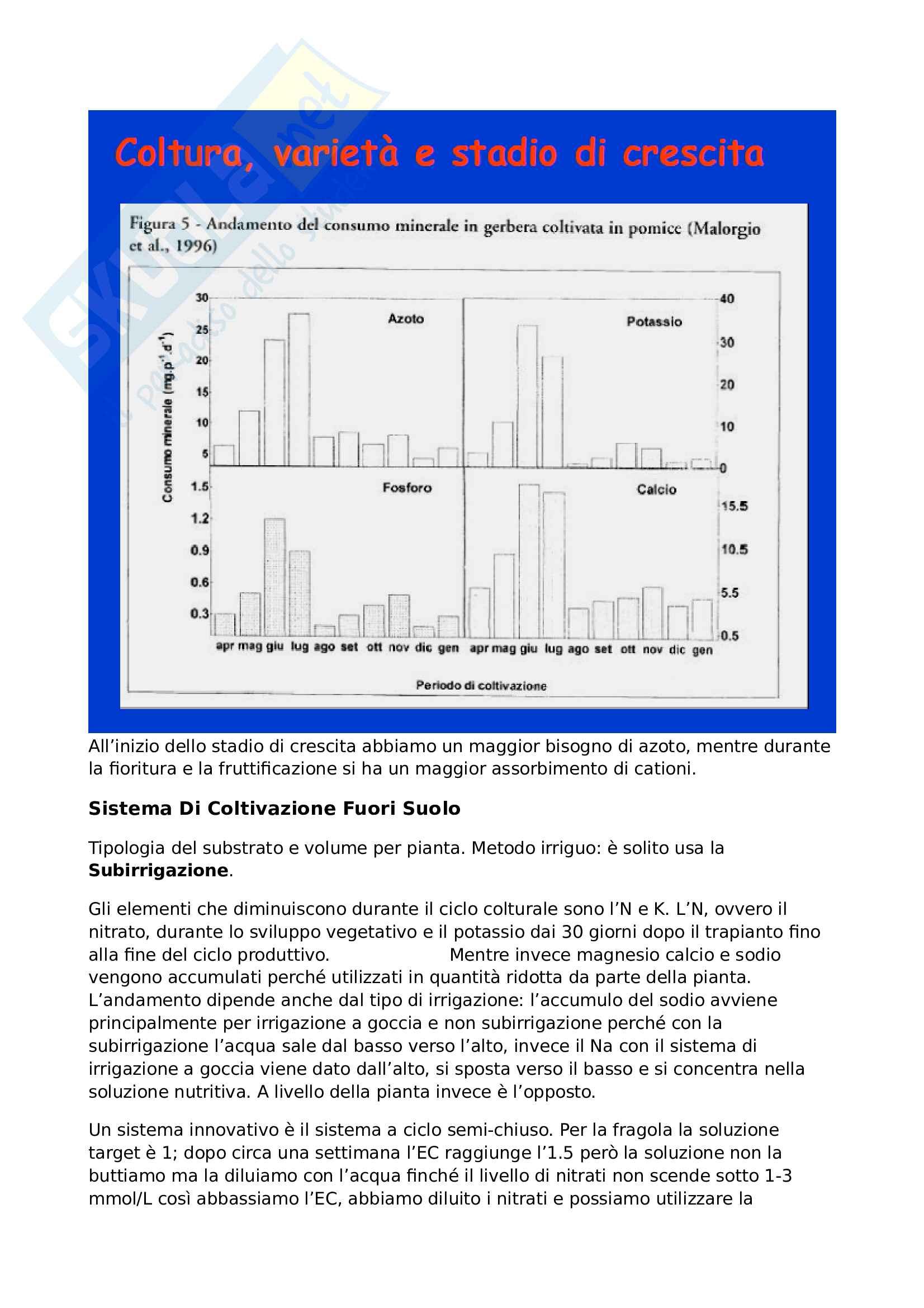 Sistemi ortofloricoli - Soluzione nutritiva Pag. 11