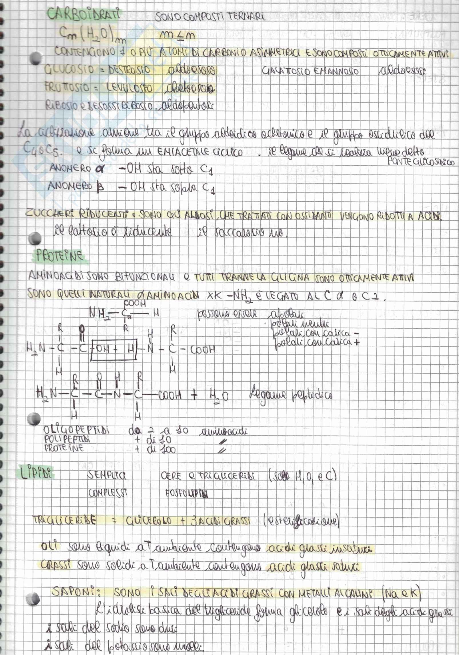 Tutti i quesiti di Chimica Alpha Test con soluzioni e riassunti per l'accesso alle Professioni Sanitarie e Medicina - Parte 1 Pag. 16