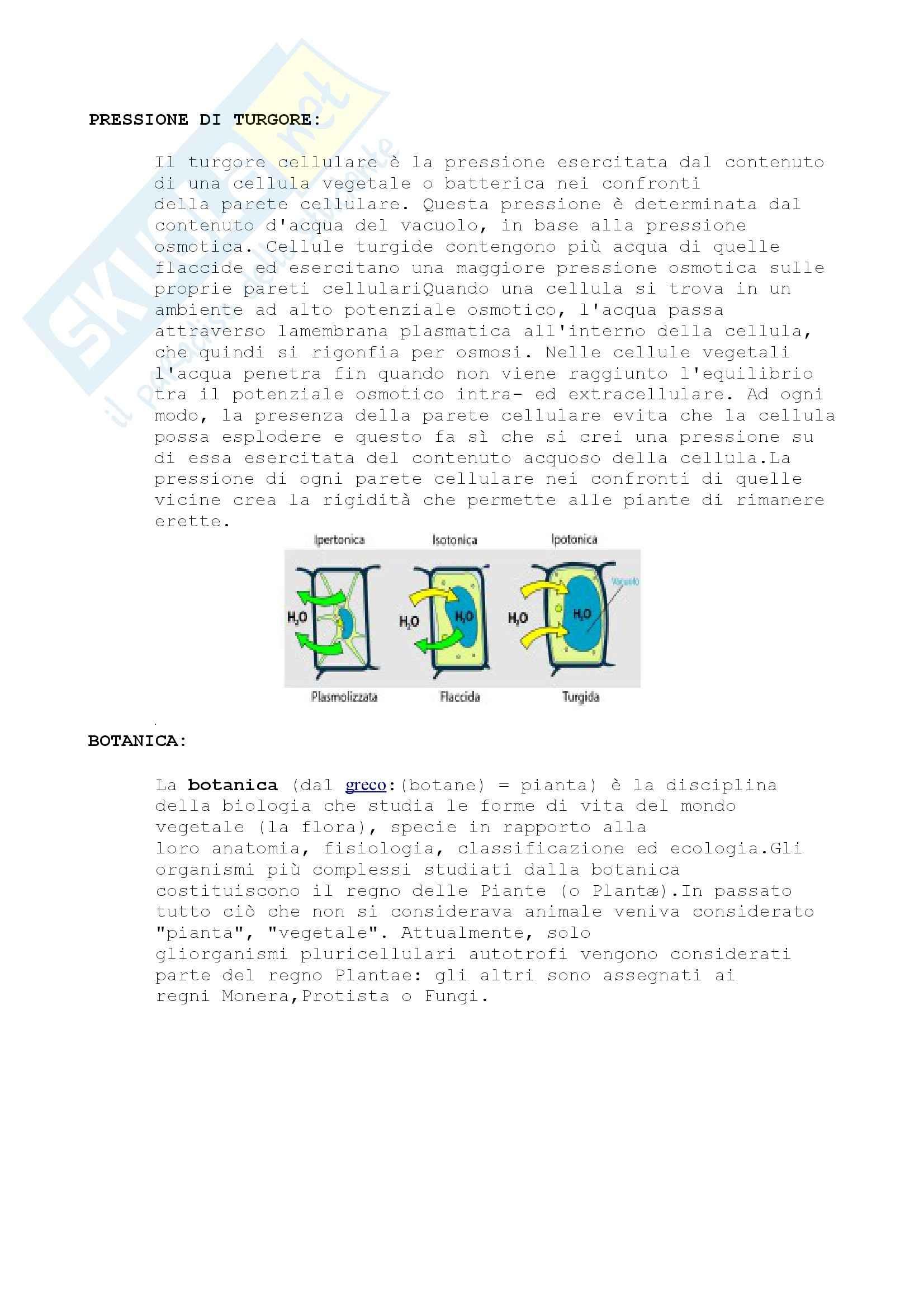 Nomenclatura e concetti generali, Biologia Vegetale Pag. 16