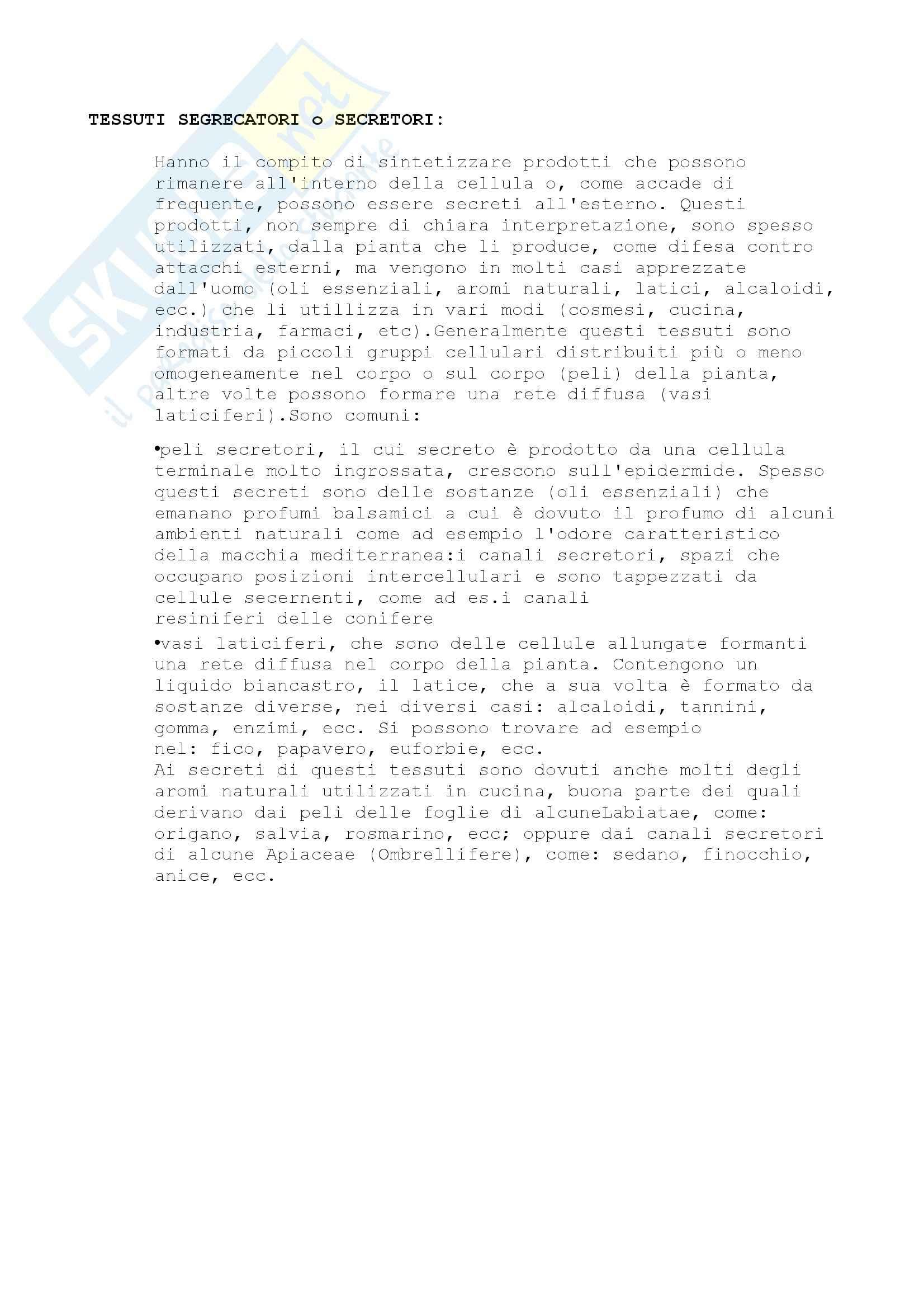 Nomenclatura e concetti generali, Biologia Vegetale Pag. 26