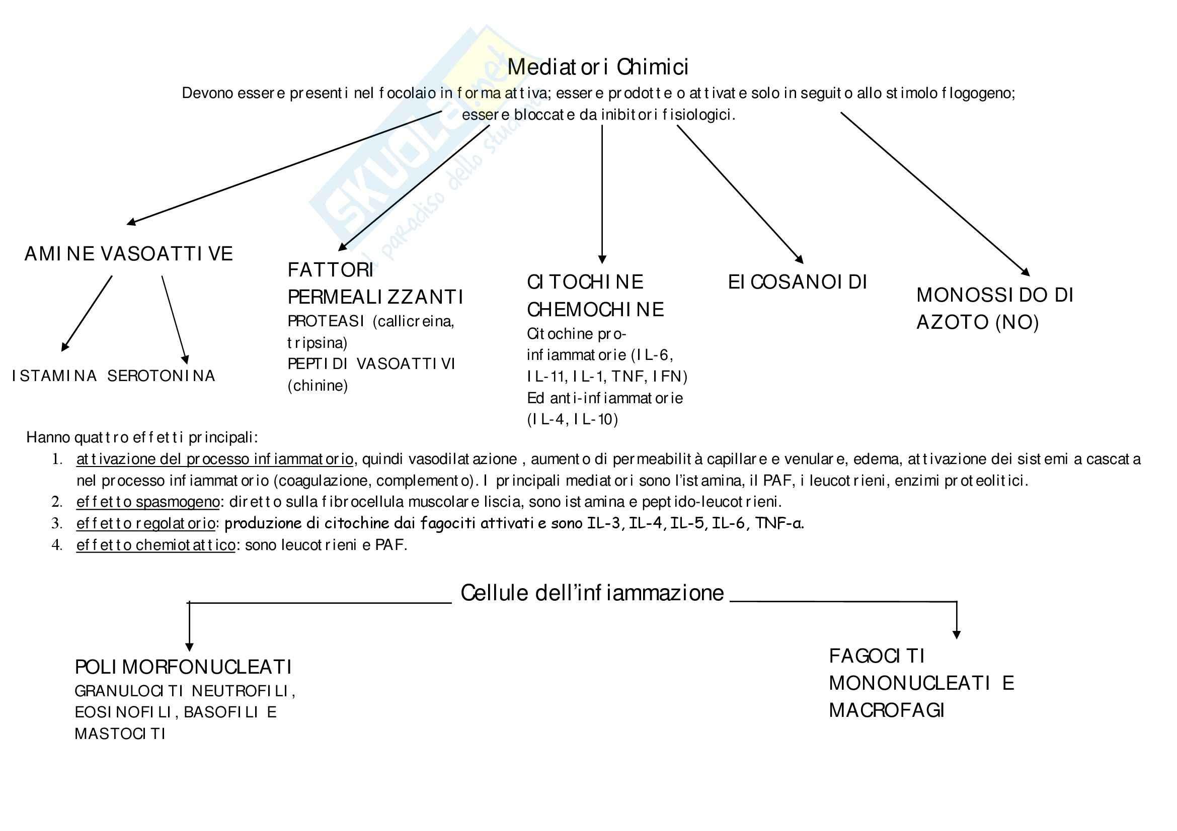 Patologia e fisiopatologia generale – Infiammazione patologica