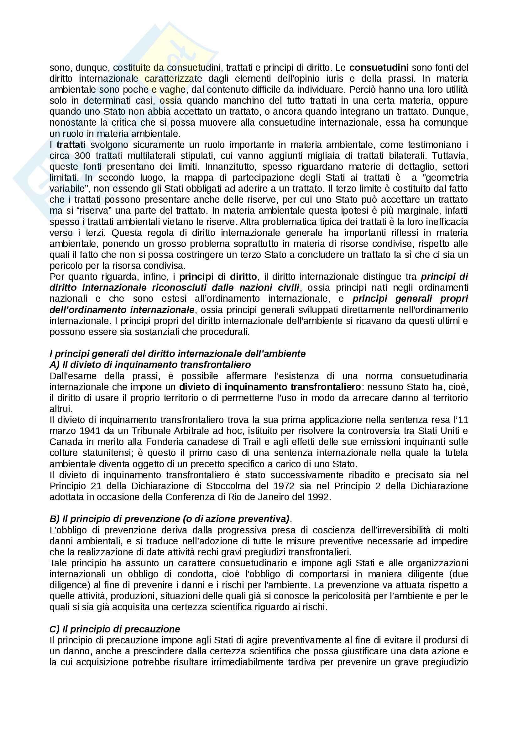 Diritto internazionale dell'ambiente Pag. 6