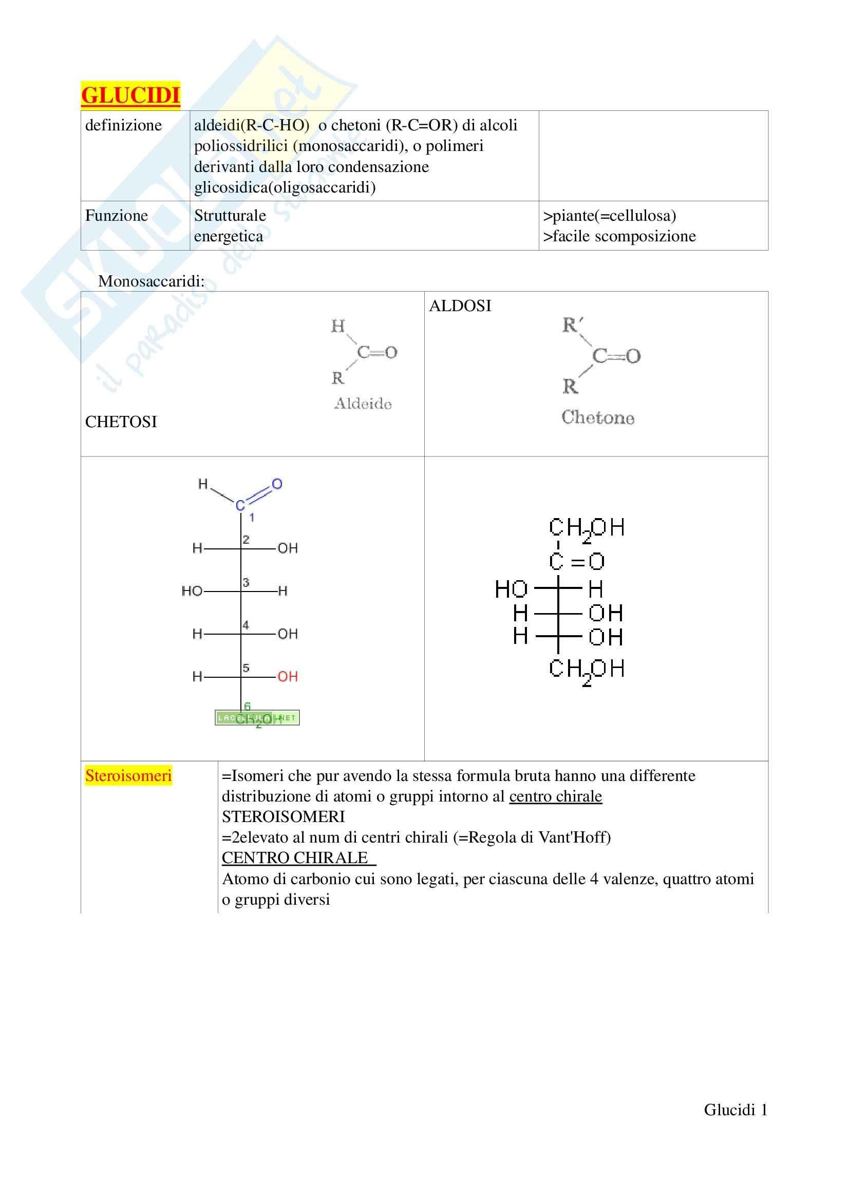 Biochimica I – Glucidi e lipidi – Schemi