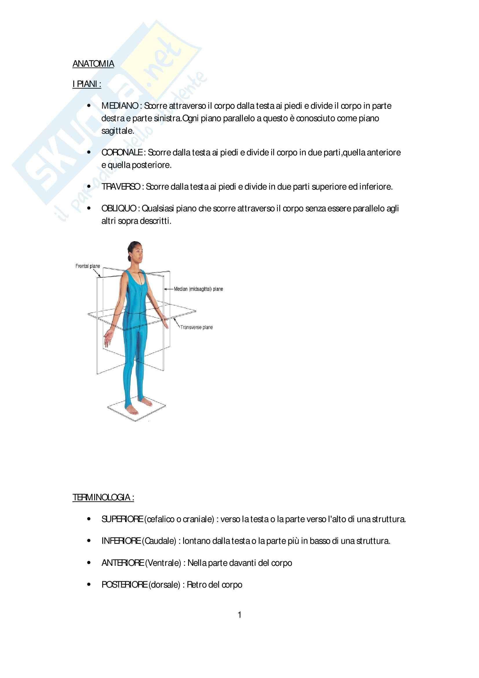 Riassunto esame anatomia e istologia : intro,apparato scheletrico e articolazioni, prof. Boccafoschi