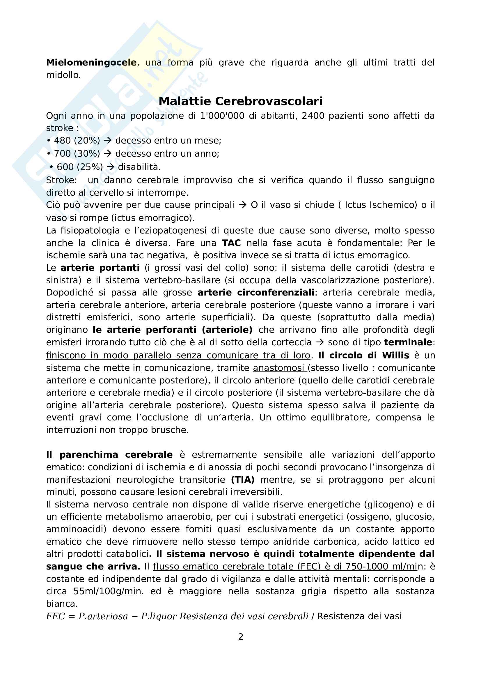 Elementi di Neurologia e Neuroriabilitazione - Riassunto schema Pag. 2