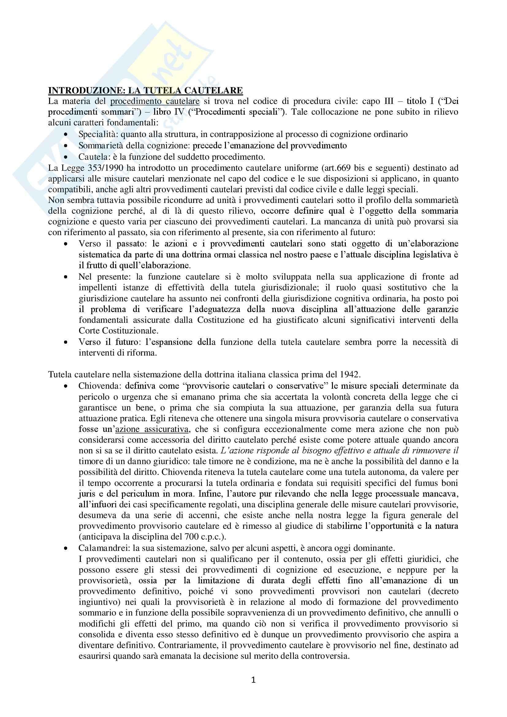 Riassunto esame Diritto processuale civile, prof. Saletti, libro consigliato Il processo cautelare, Tarzia, Saletti