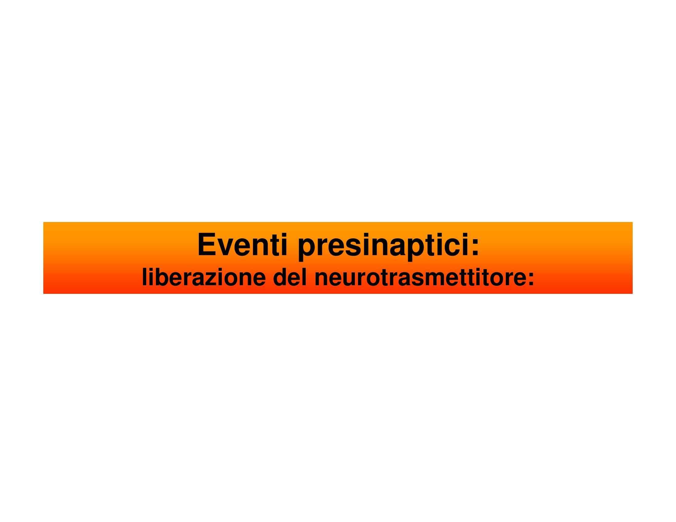 Eventi presinaptici - Fisiologia I