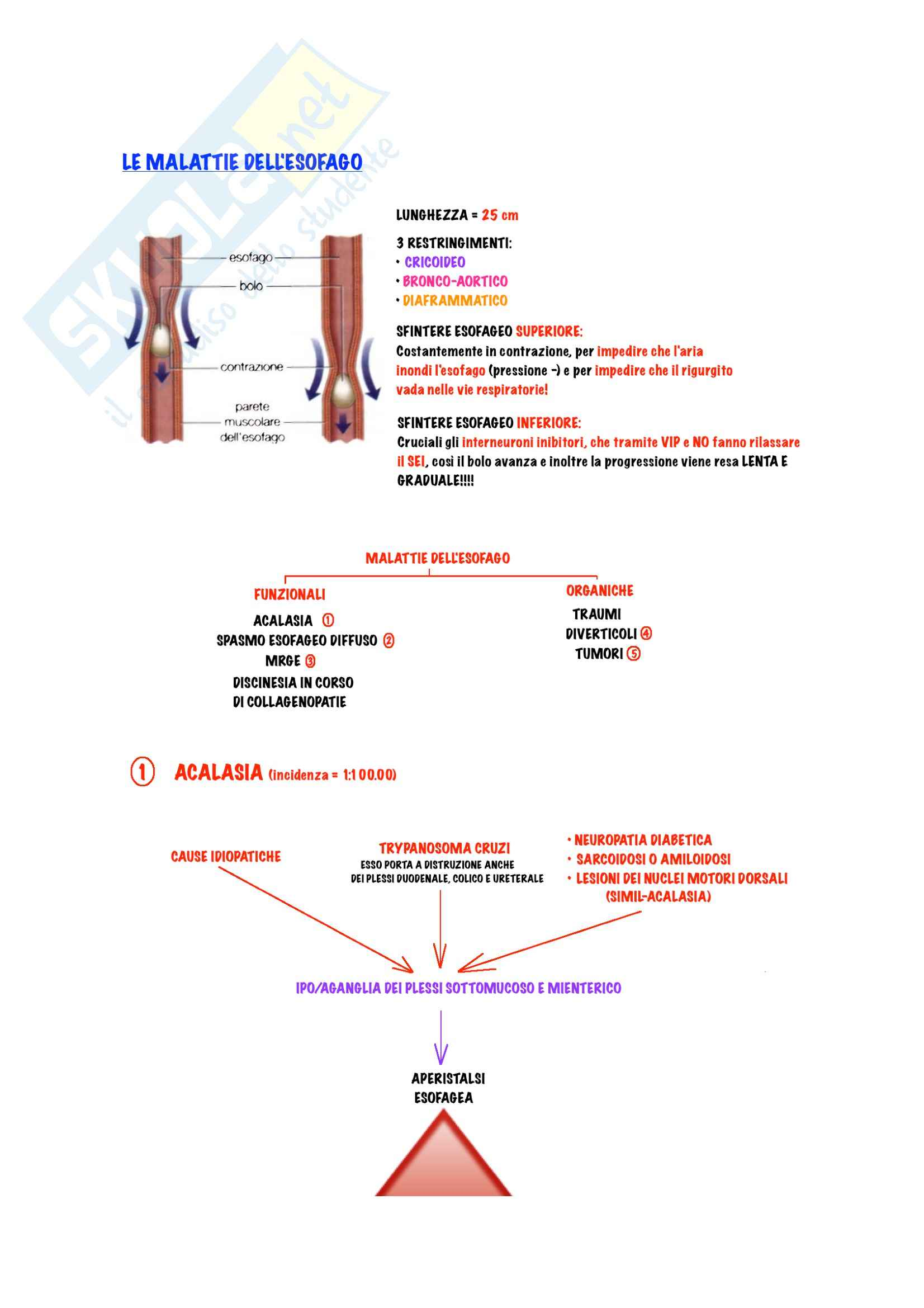 Gastroenterologia - Malattie dell'esofago Pag. 2