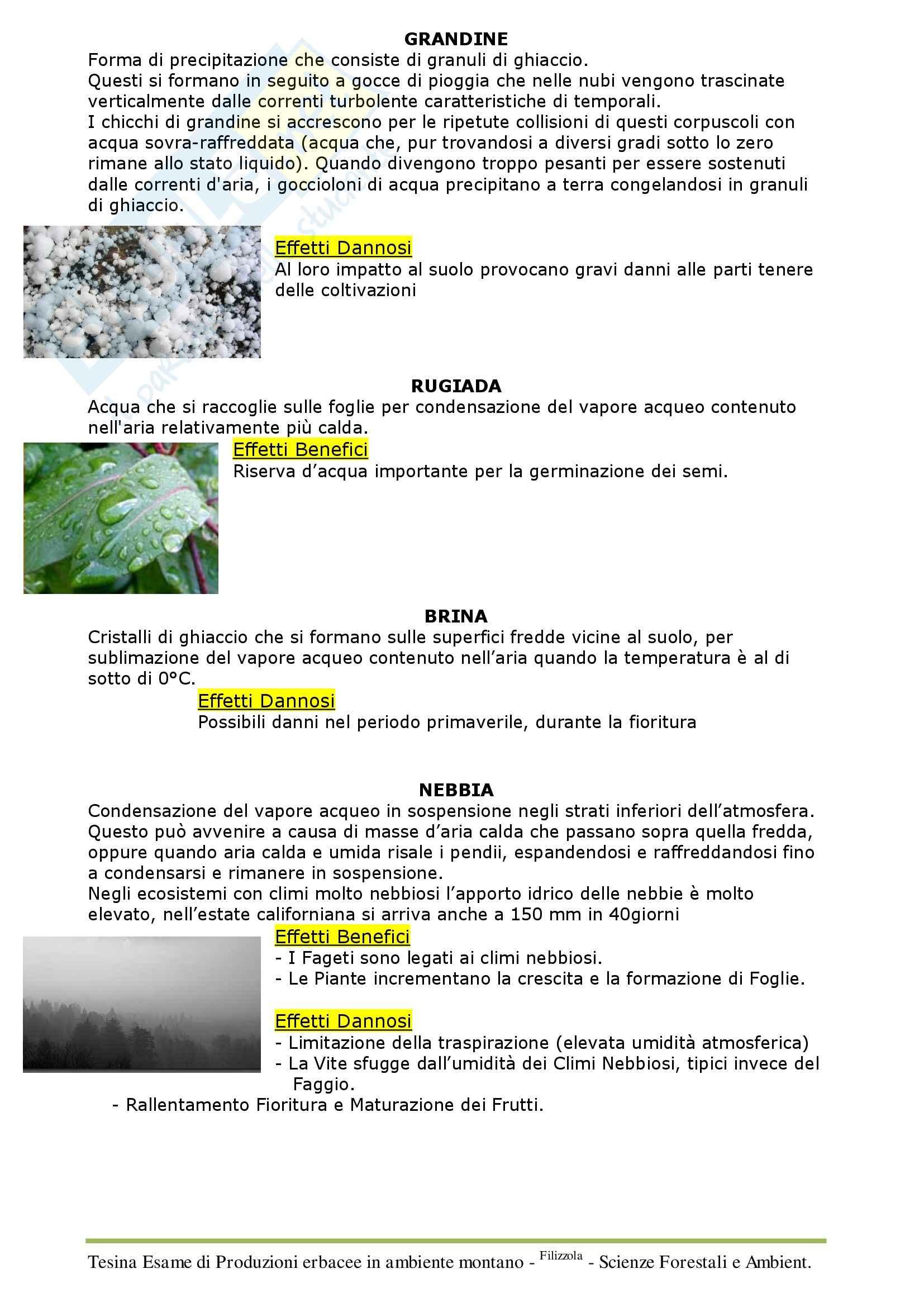 Alpicoltura, prati e pascoli - Appunti Pag. 6
