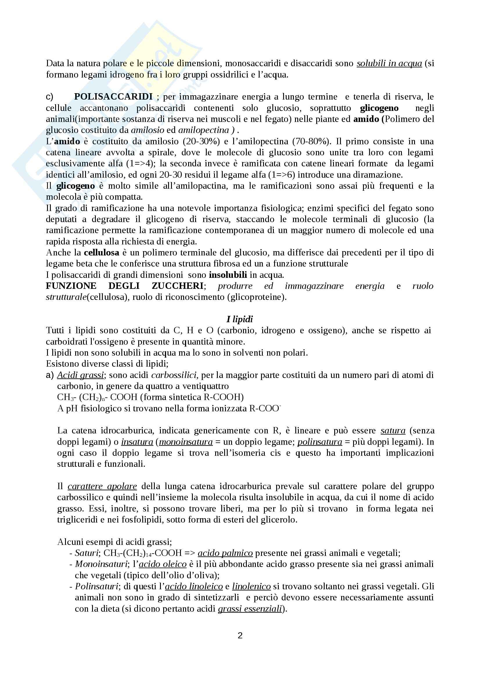 Biochimica Pag. 2