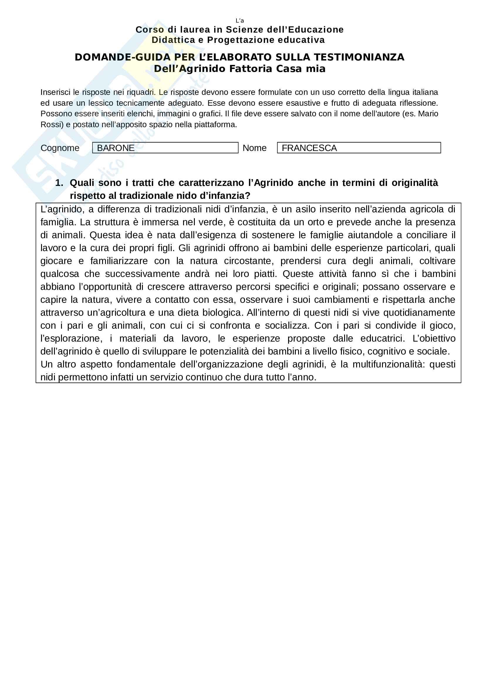 Esempio di secondo Elaborato da scrivere richiesto agli studenti frequentanti, esame di Didattica e progettazione educativa, prof. De Silvestri